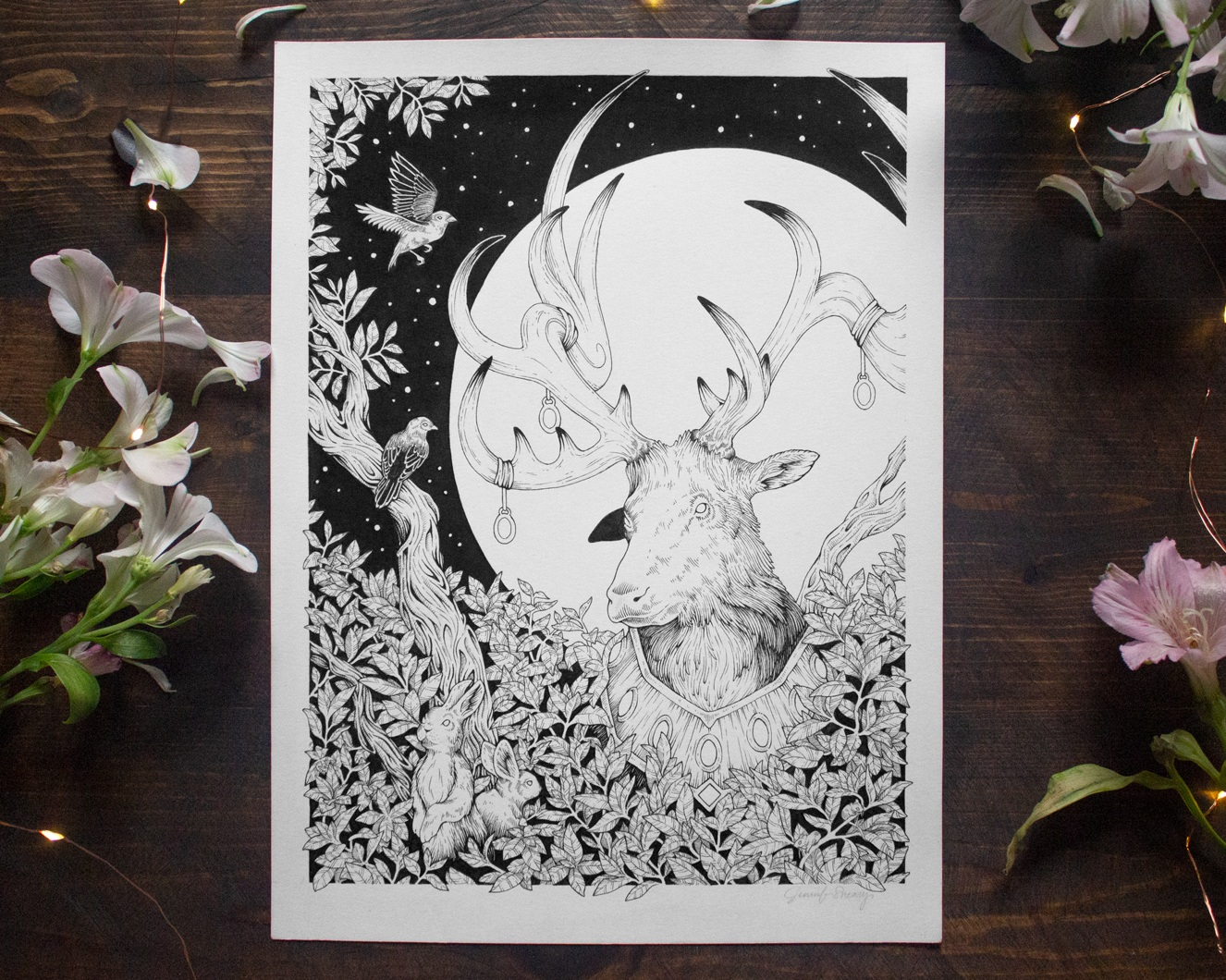 Jenn Sneary Illustration, Moonlight, Pen and Ink drawings