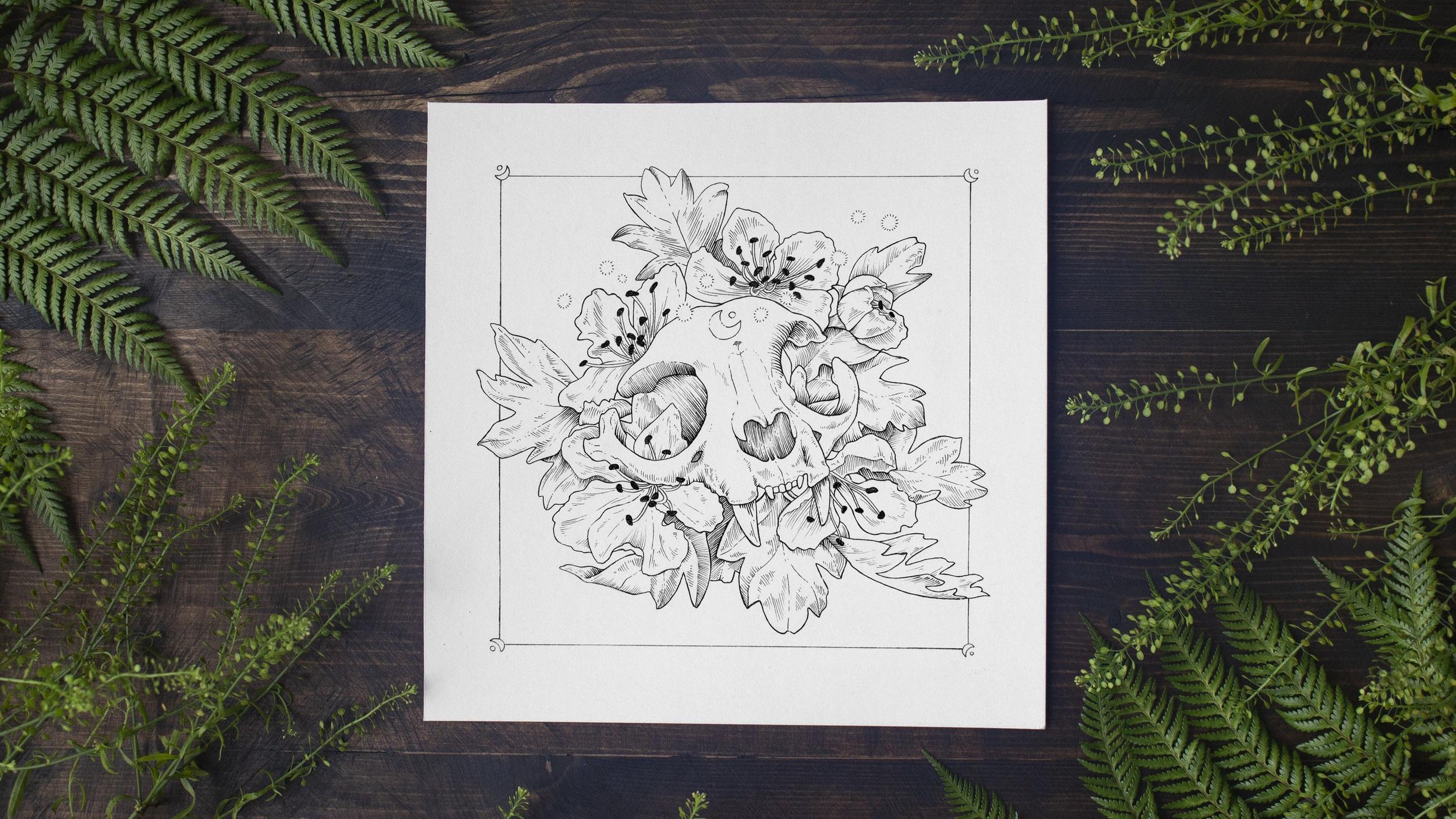 Jenn Sneary Illustration, Luna, Pen and Ink skull drawings