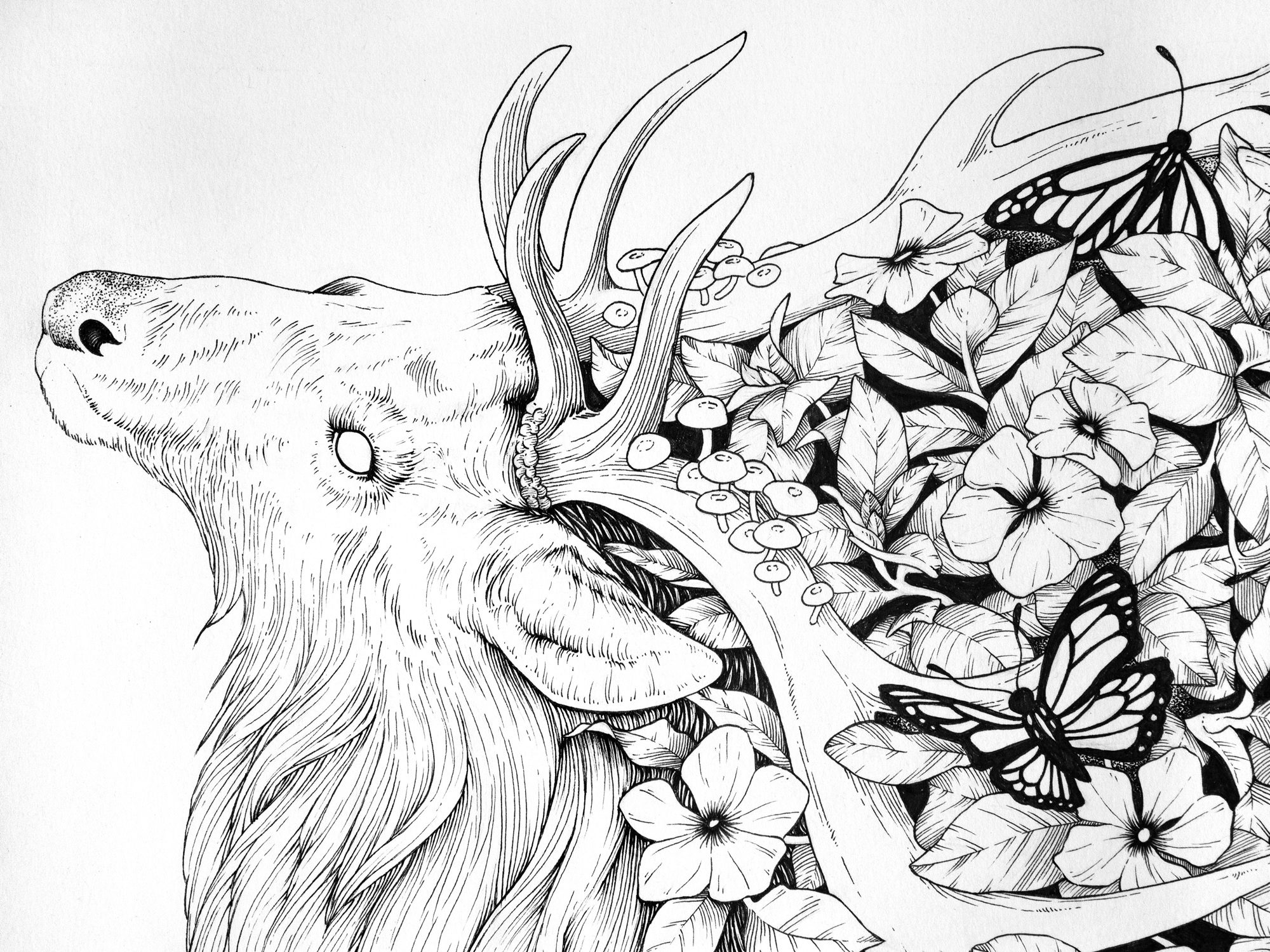 Jenn Sneary Illustration, Warden, floral elk pen and Ink drawing