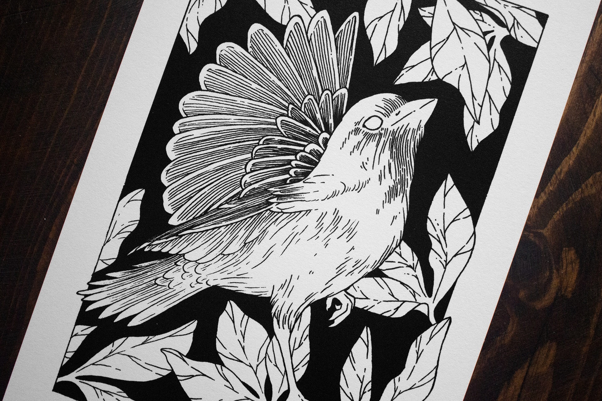 Jenn Sneary Illustration, Wing, floral pen and ink fantasy drawings