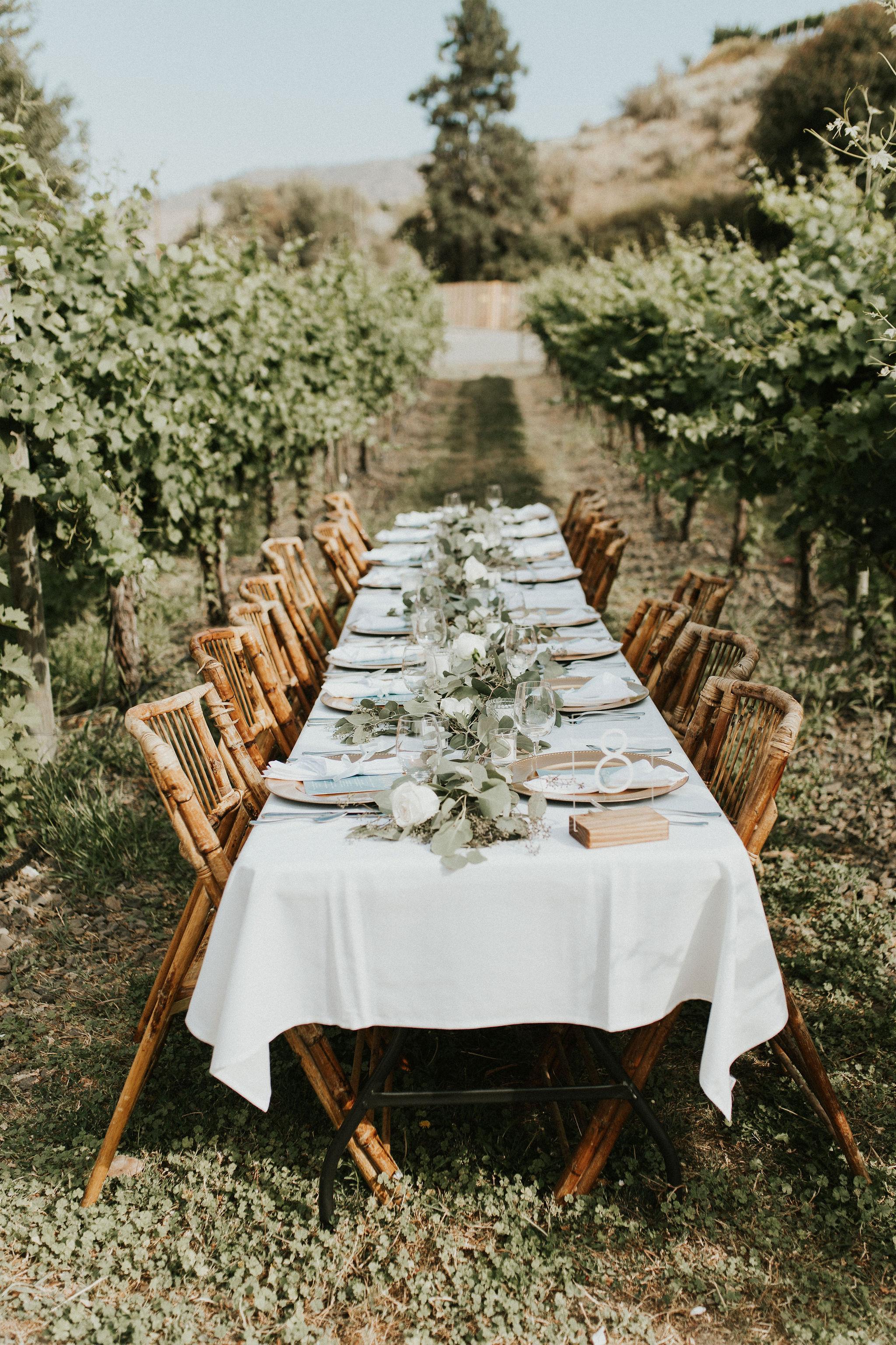 Beautiful Table in a vineyard