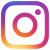 instagramiconsmall.jpg