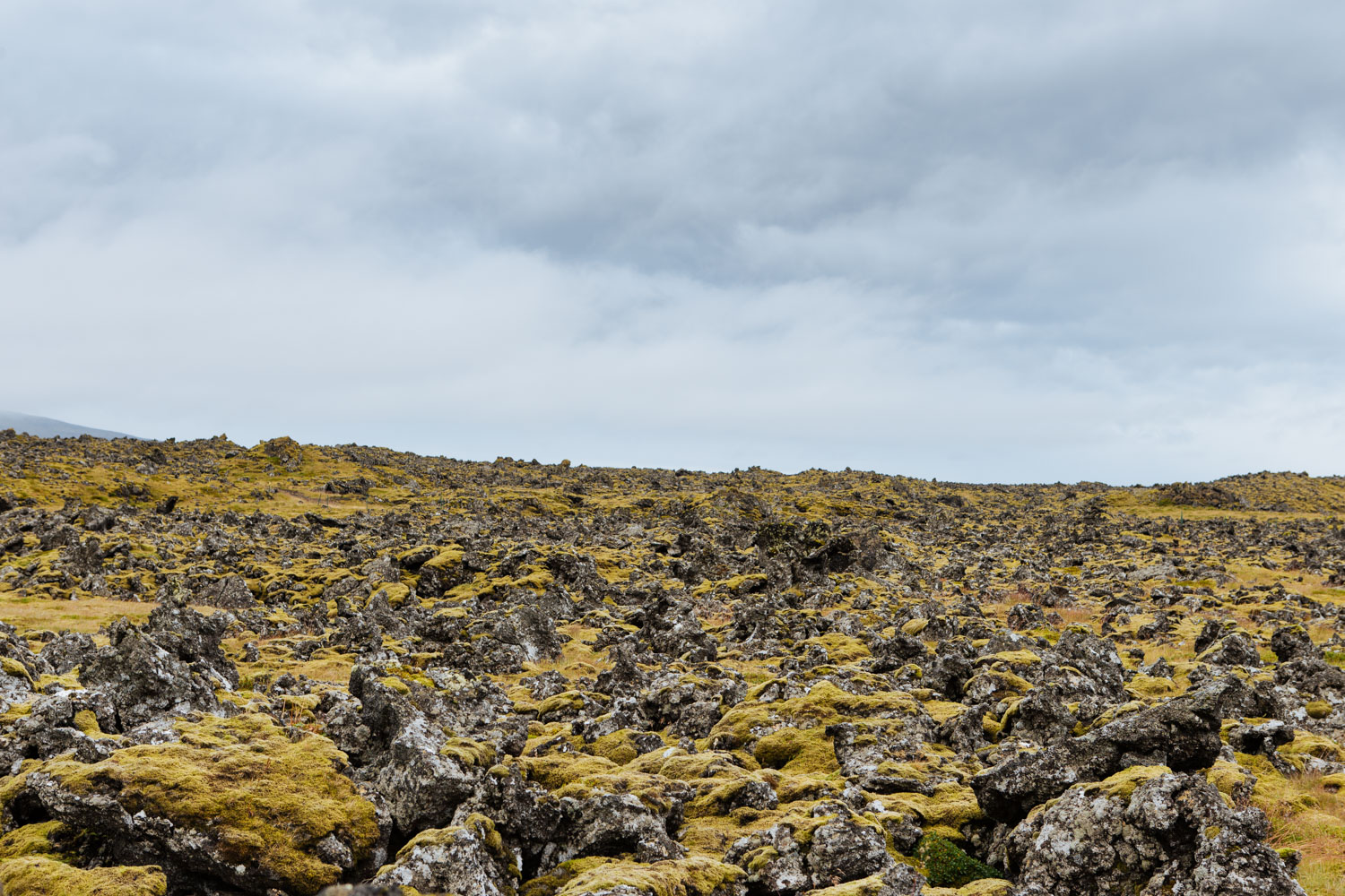 Touring-Iceland-16a.jpg