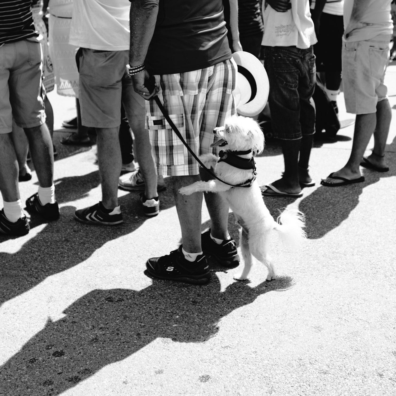People-LA-7.jpg