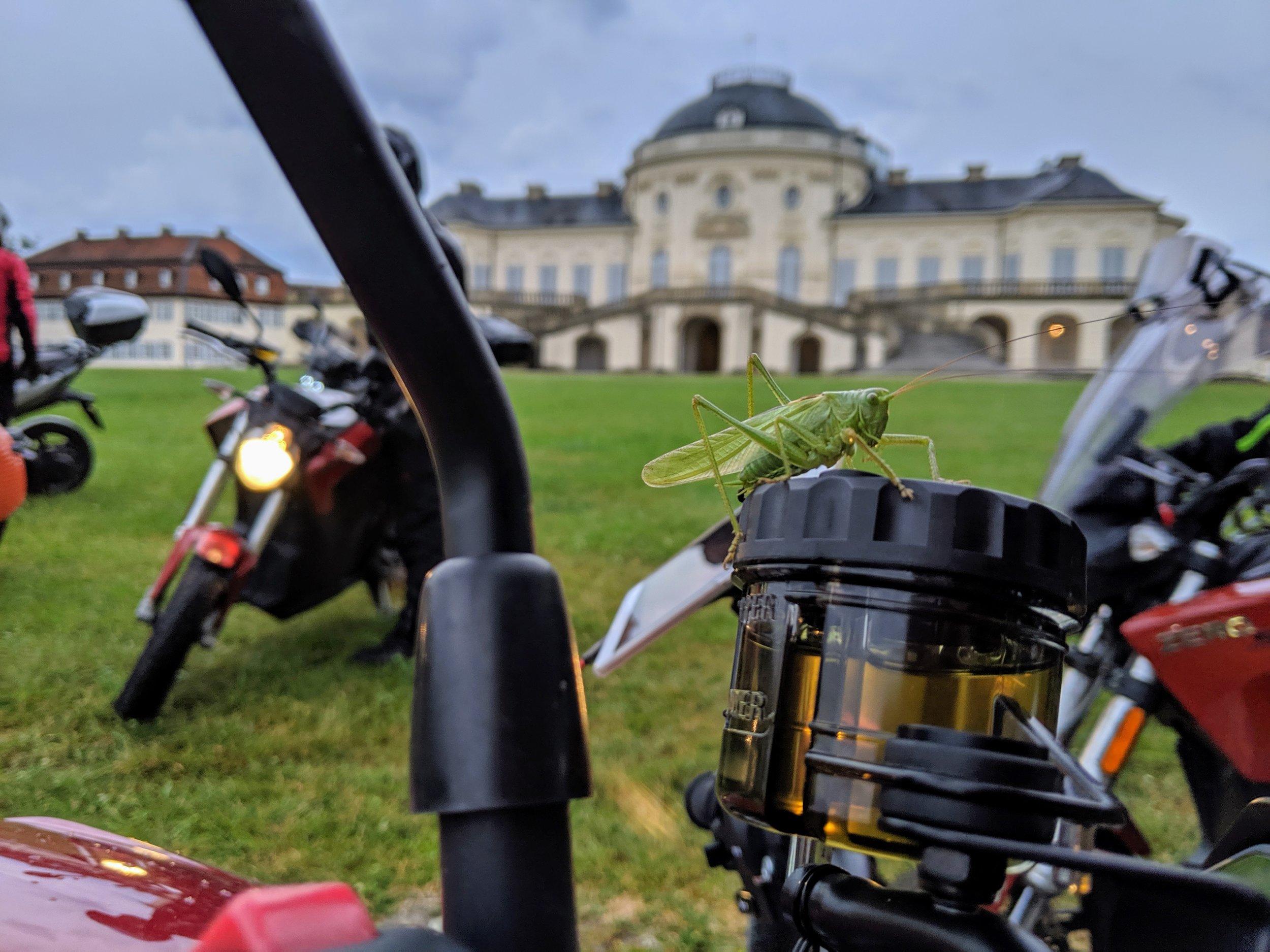 First stop, Schloss Solitude. It's a green tour!