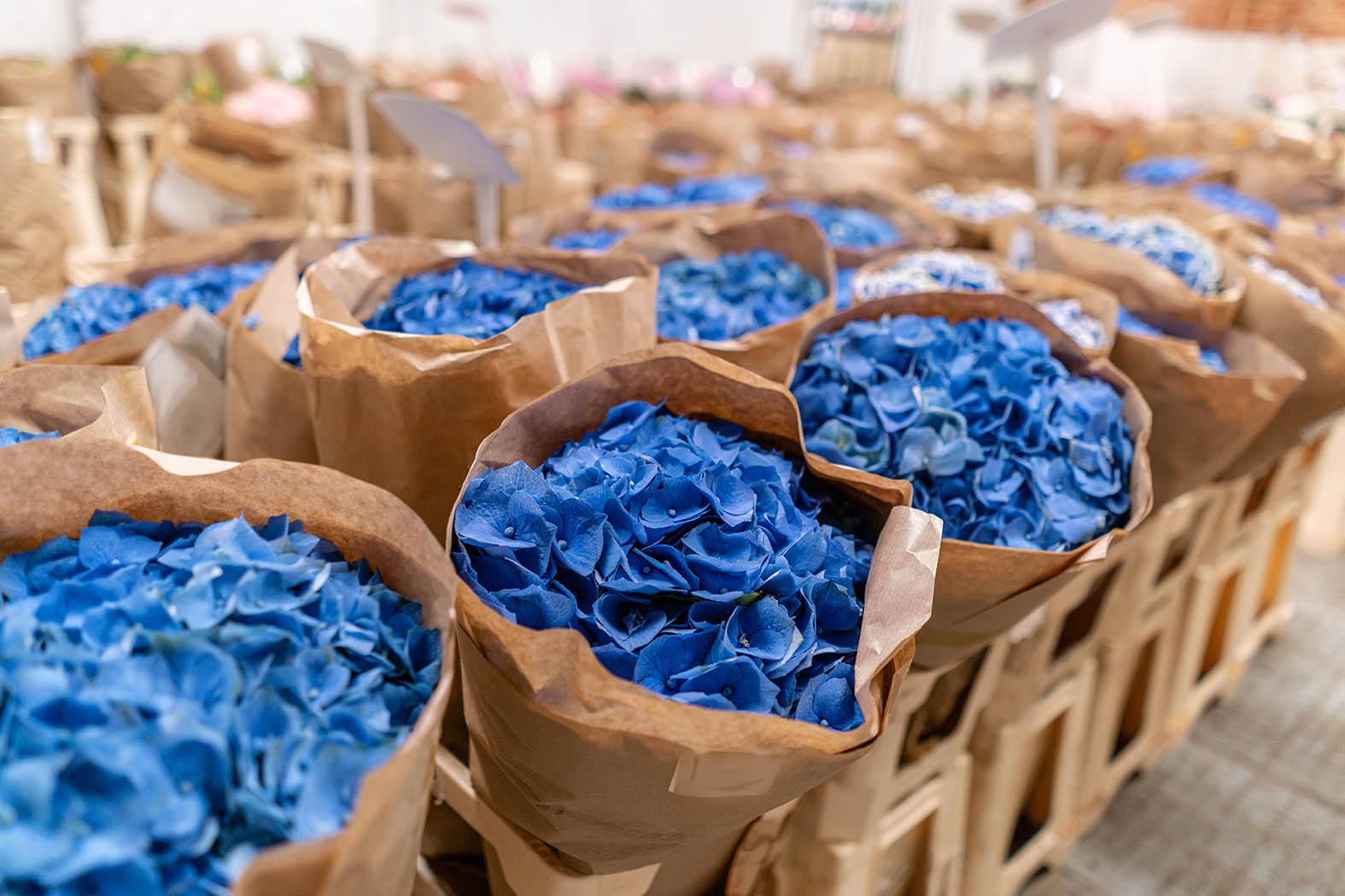 coserv flowers.jpg