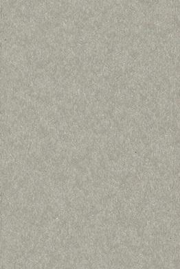 15423-dove gray.jpg
