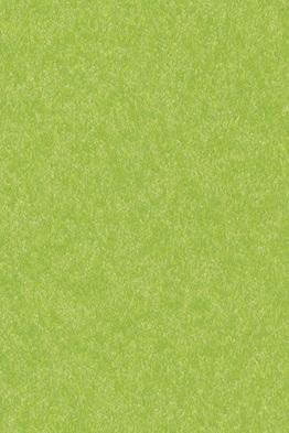 15423-lime green.jpg