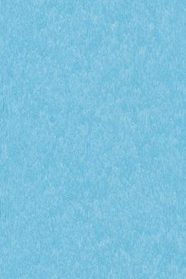 15423-ocean blue.jpg
