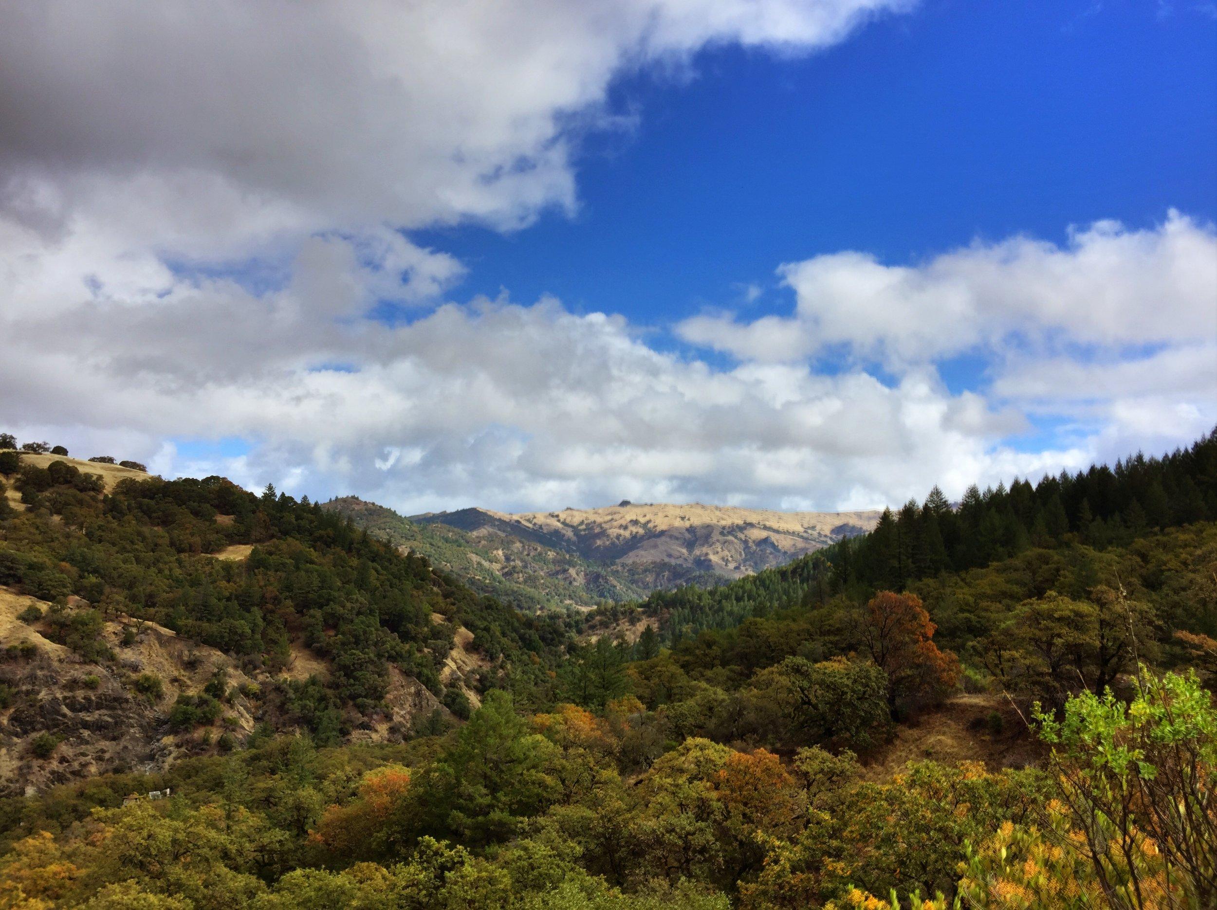The mountain -