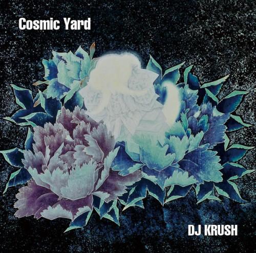02 105682-cosmic-yard-1.jpg