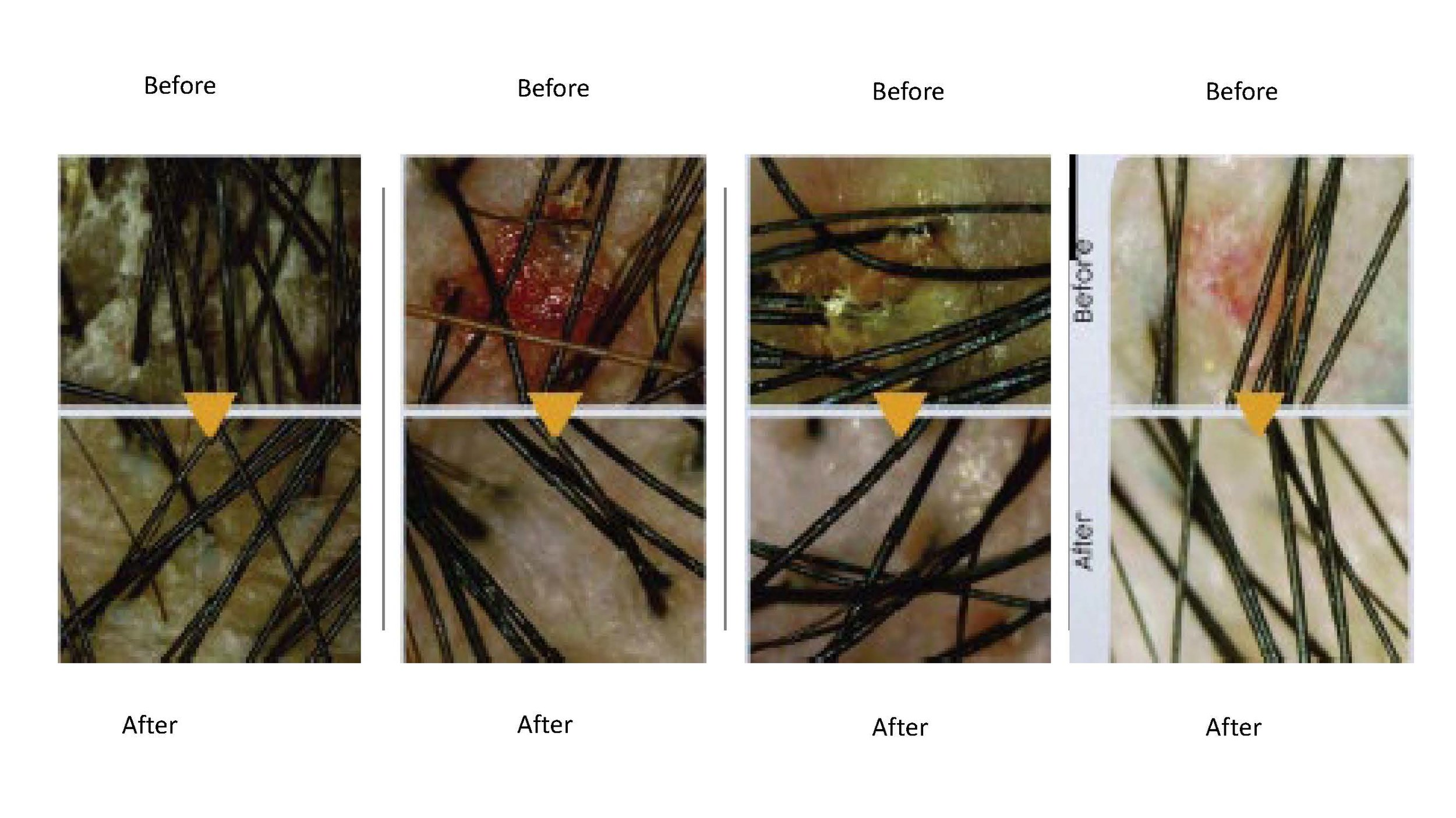 scalp trouble examples__Page_08.jpg