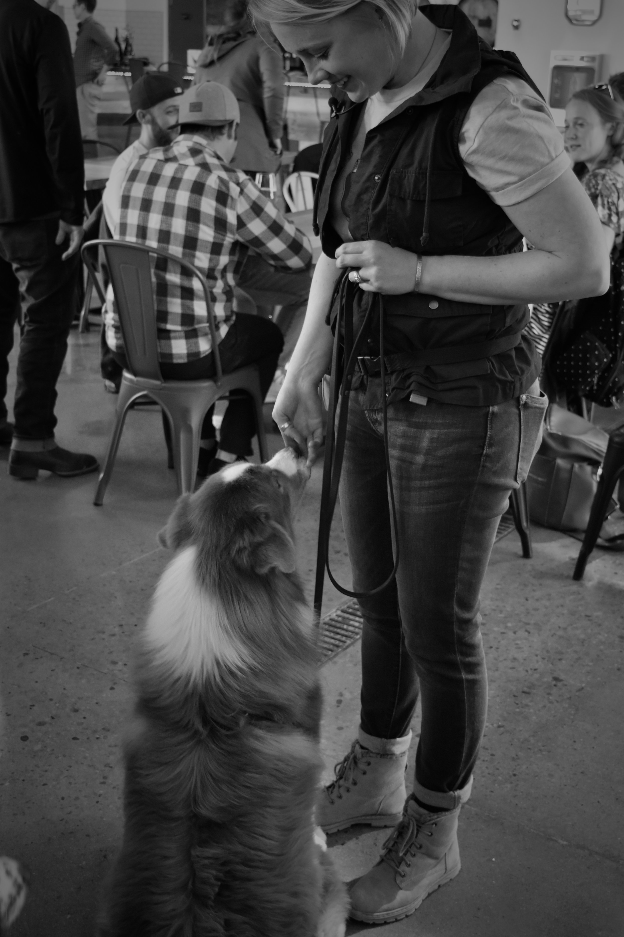 drink-with-your-dog-amber-quann