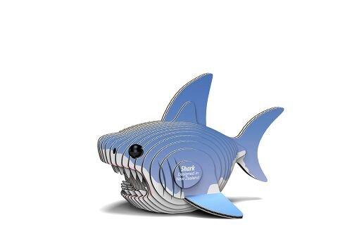 19_shark_white_bg_02.jpg