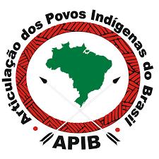 apib.png