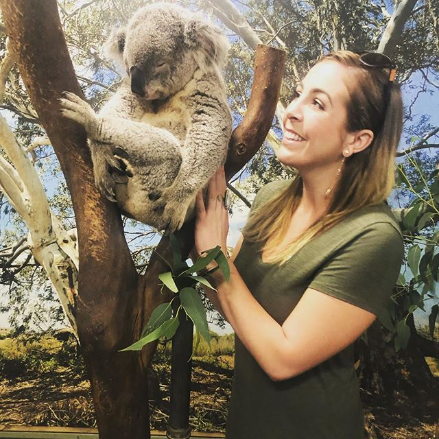 Birthday kisses from Monty 🐨 ♥️
