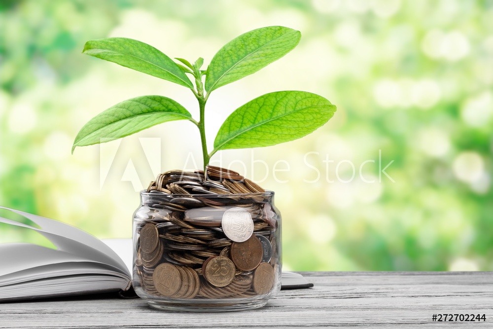 Grow your Wealth -