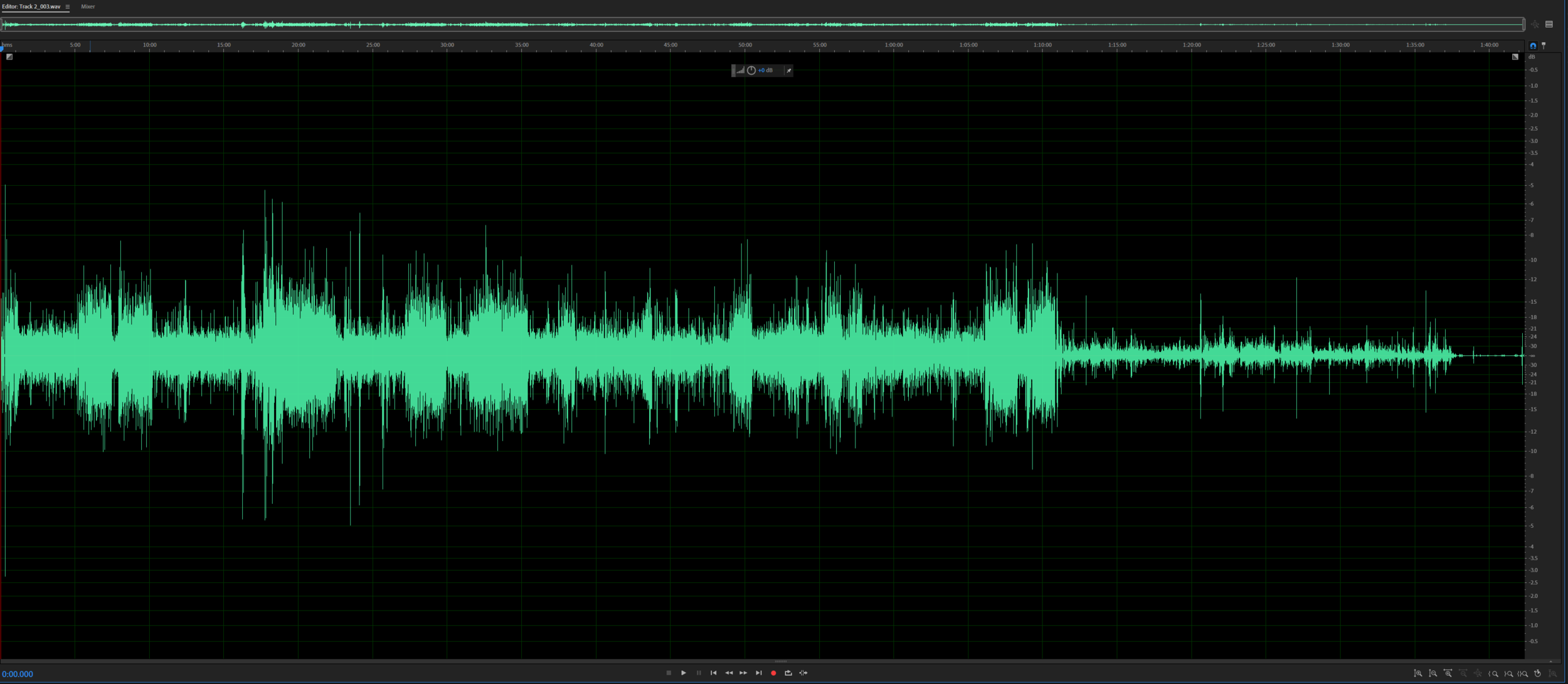 Audio waves from a Podcast we recorded