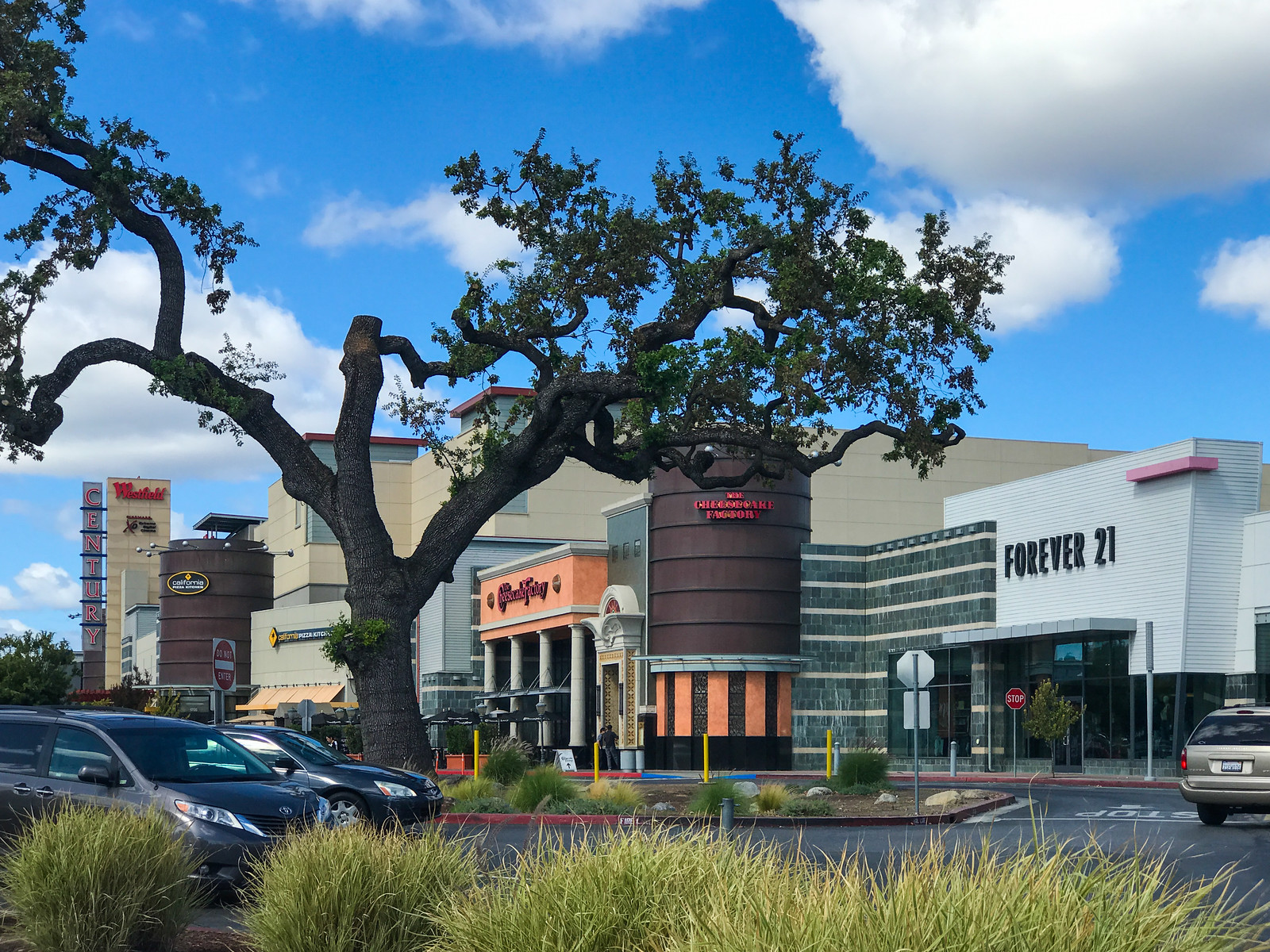 Oakridge Blossom Hill Valley Target Westfield San Jose Blu Skye Media-2044-X3.jpg