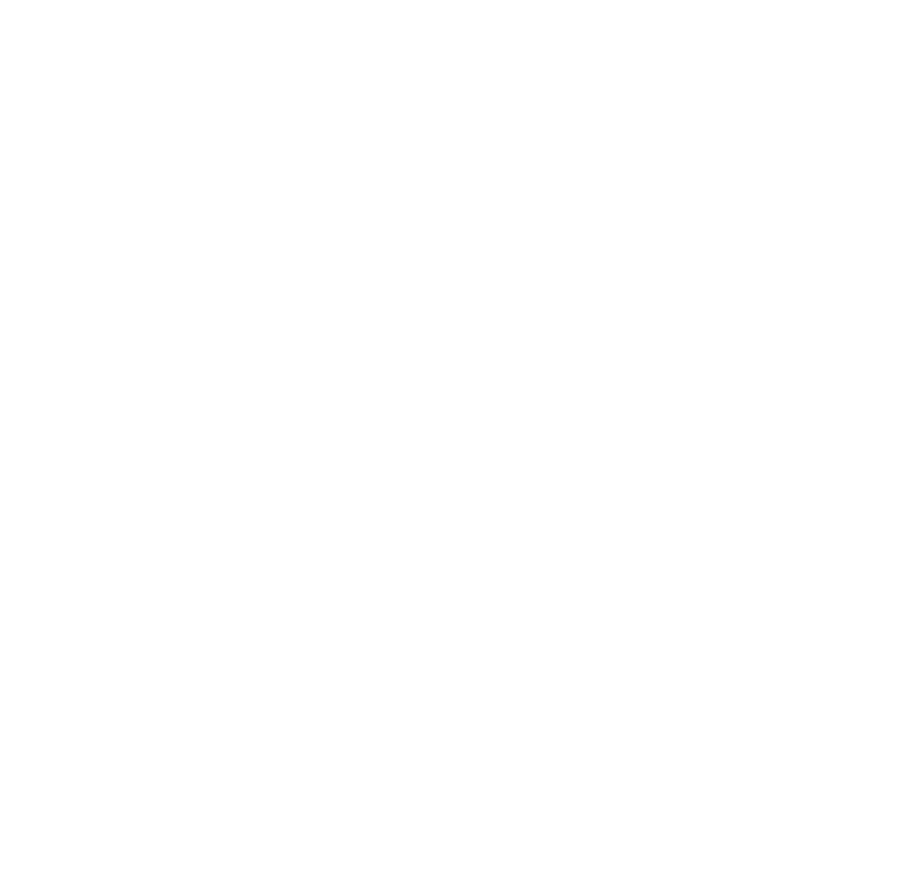 DSI_Logo-Mark-white.png