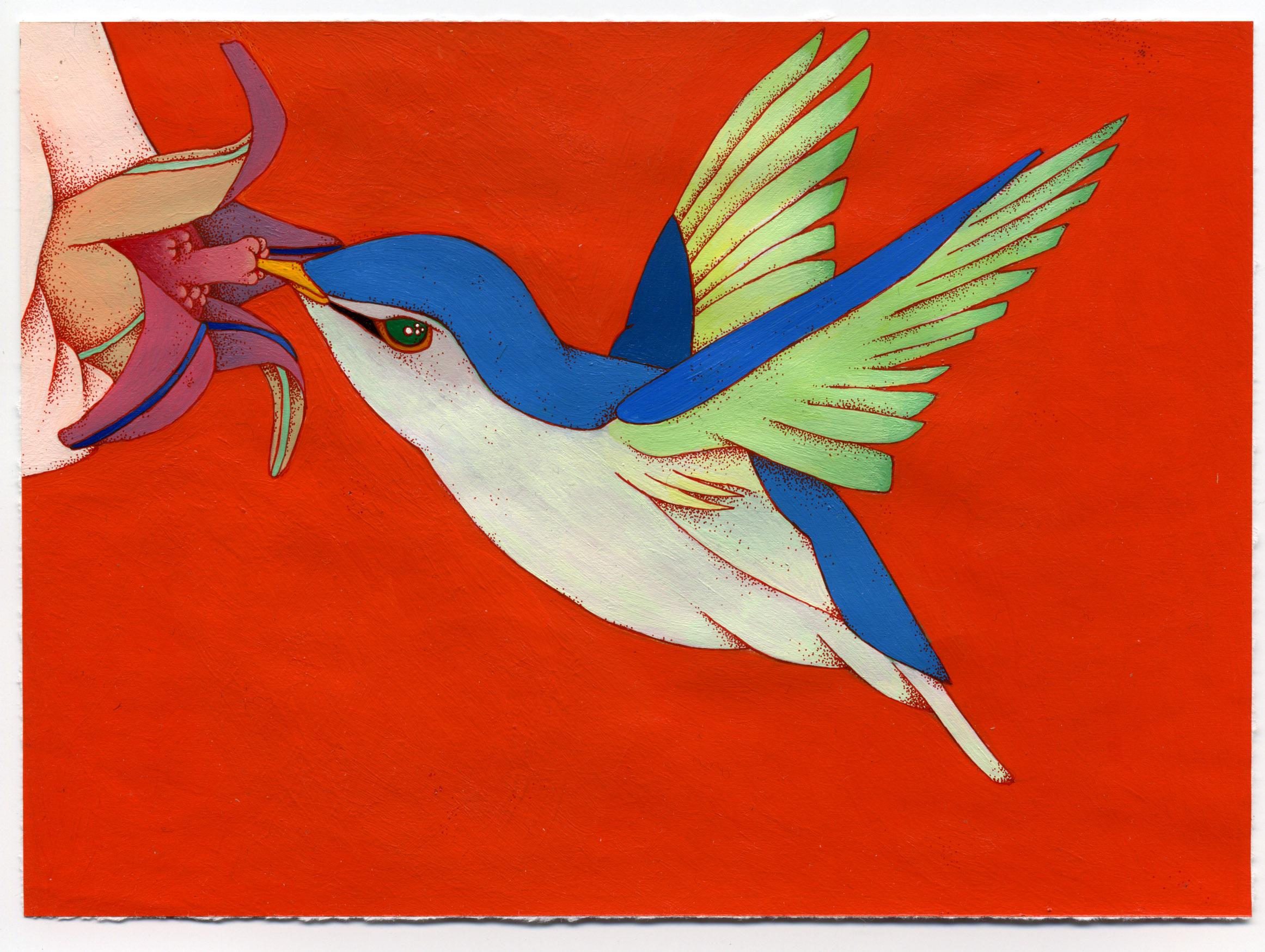 nector bird.jpg