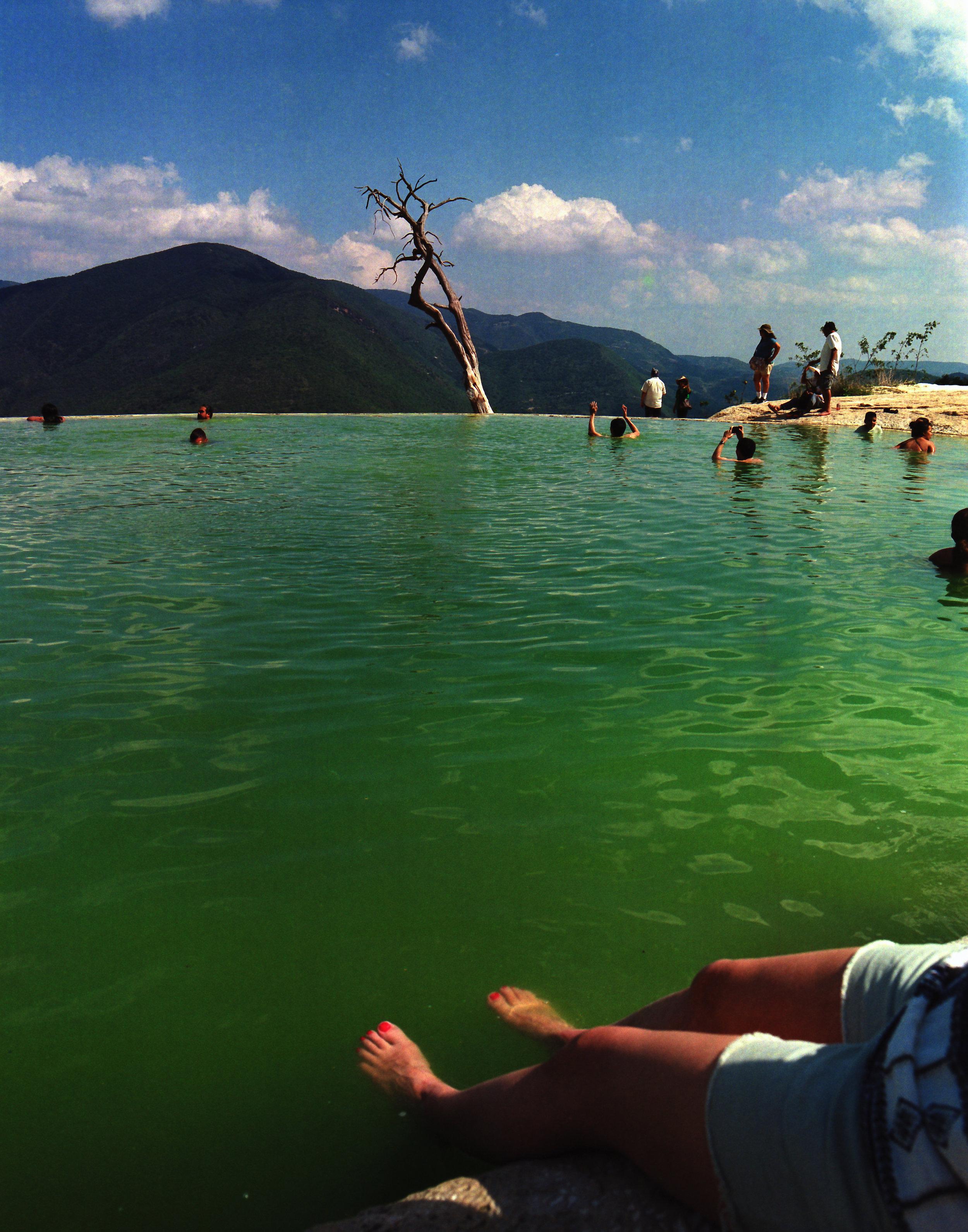 Oaxaca_Tule_y_Aqua (4 of 2).jpg
