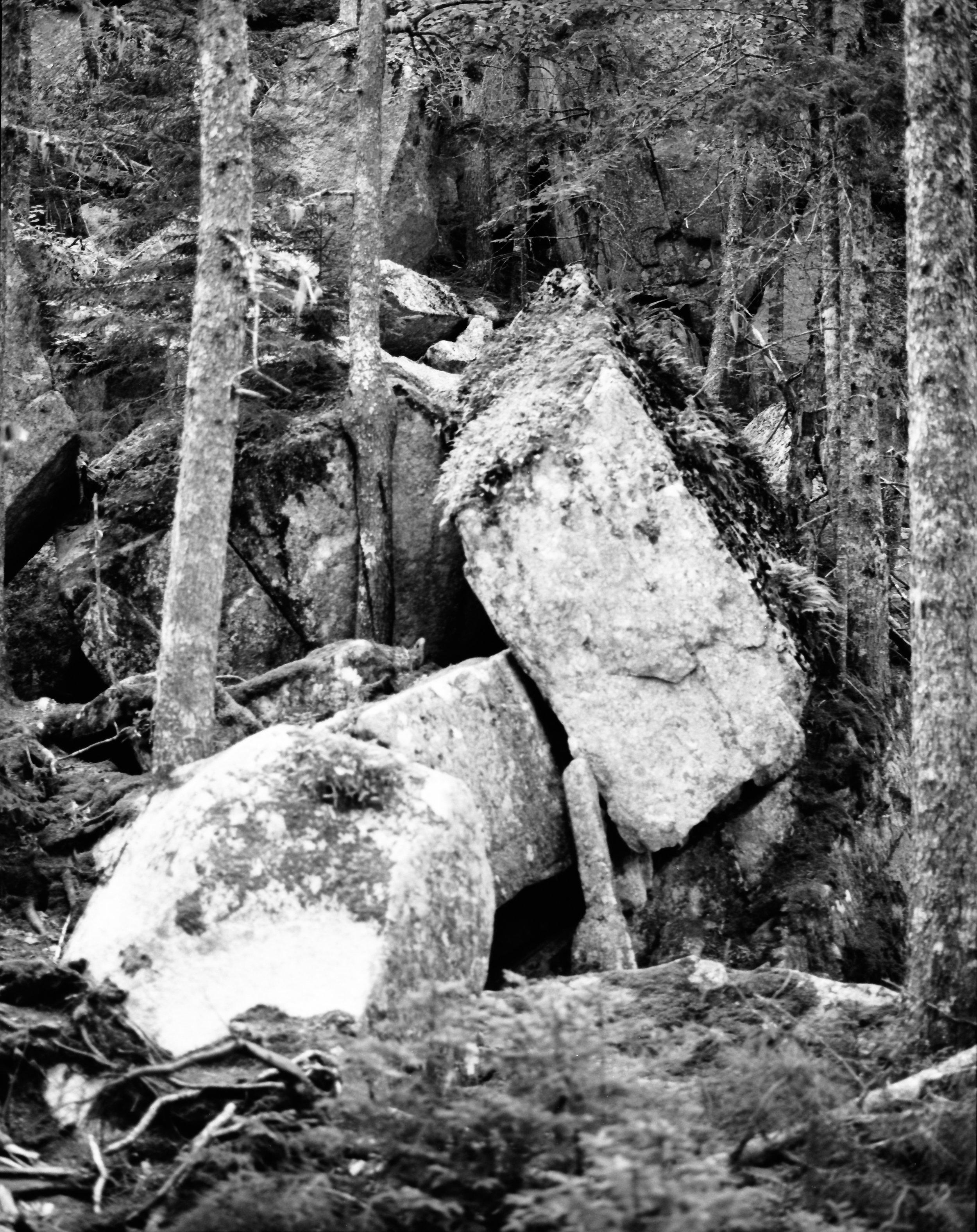 Acadia_Trip-6.jpg