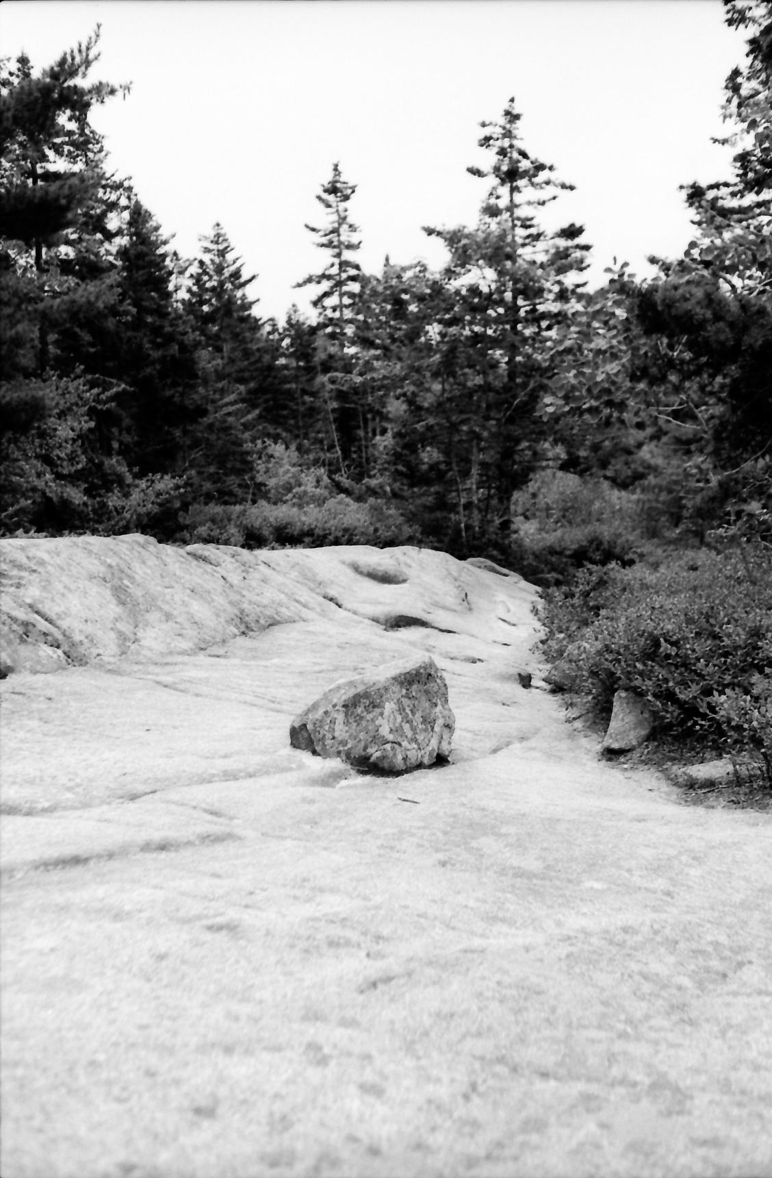 Acadia_Trip-10.jpg