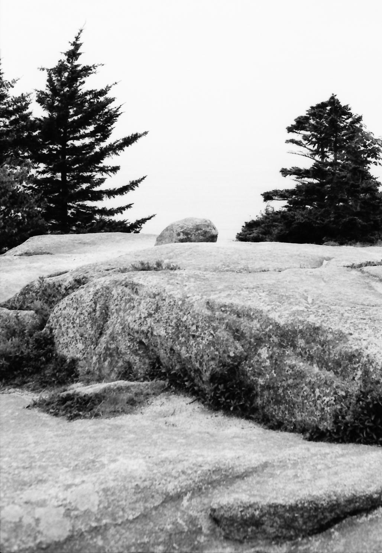 Acadia_Trip-11.jpg