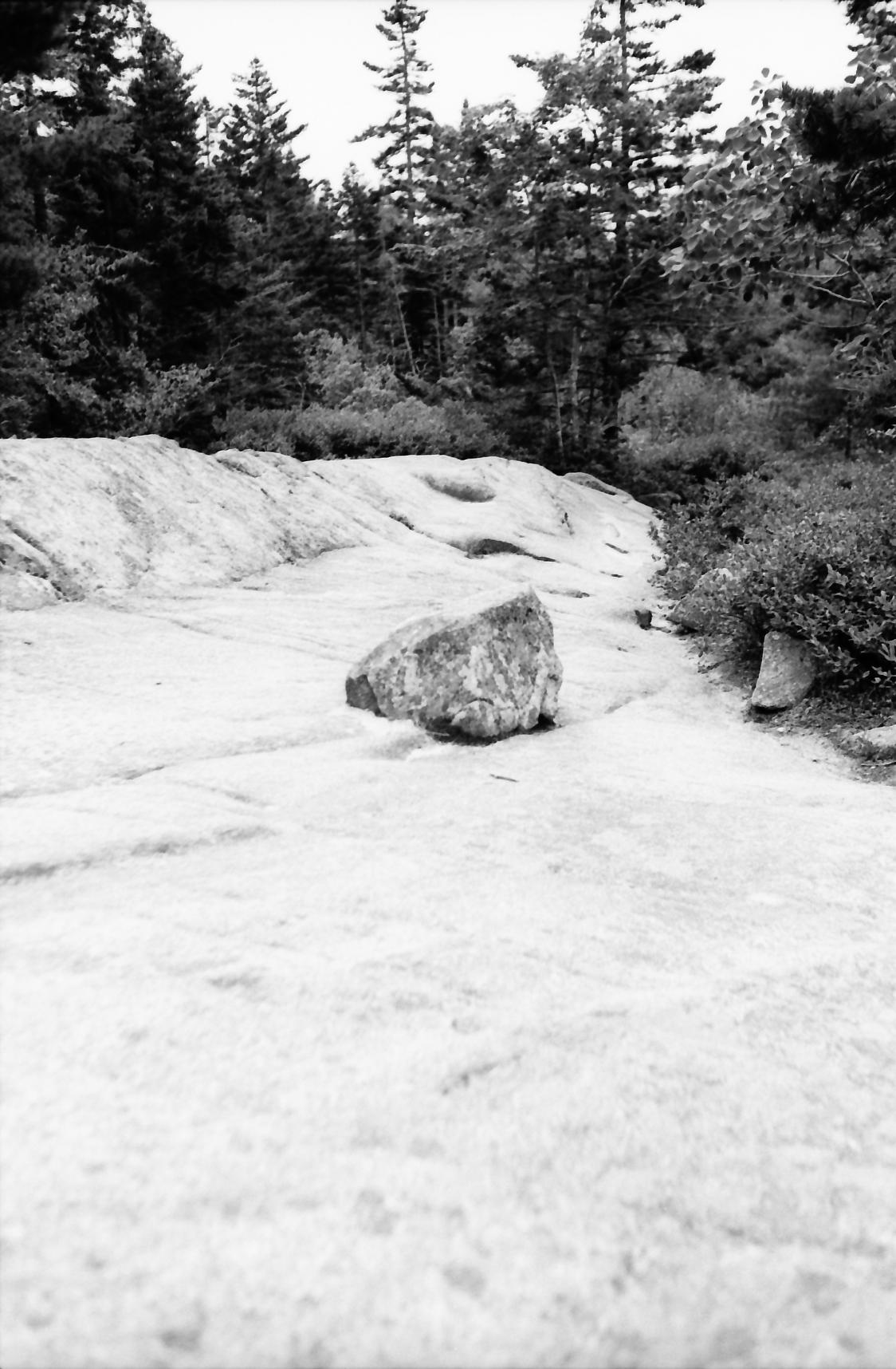 Acadia_Trip-44.jpg