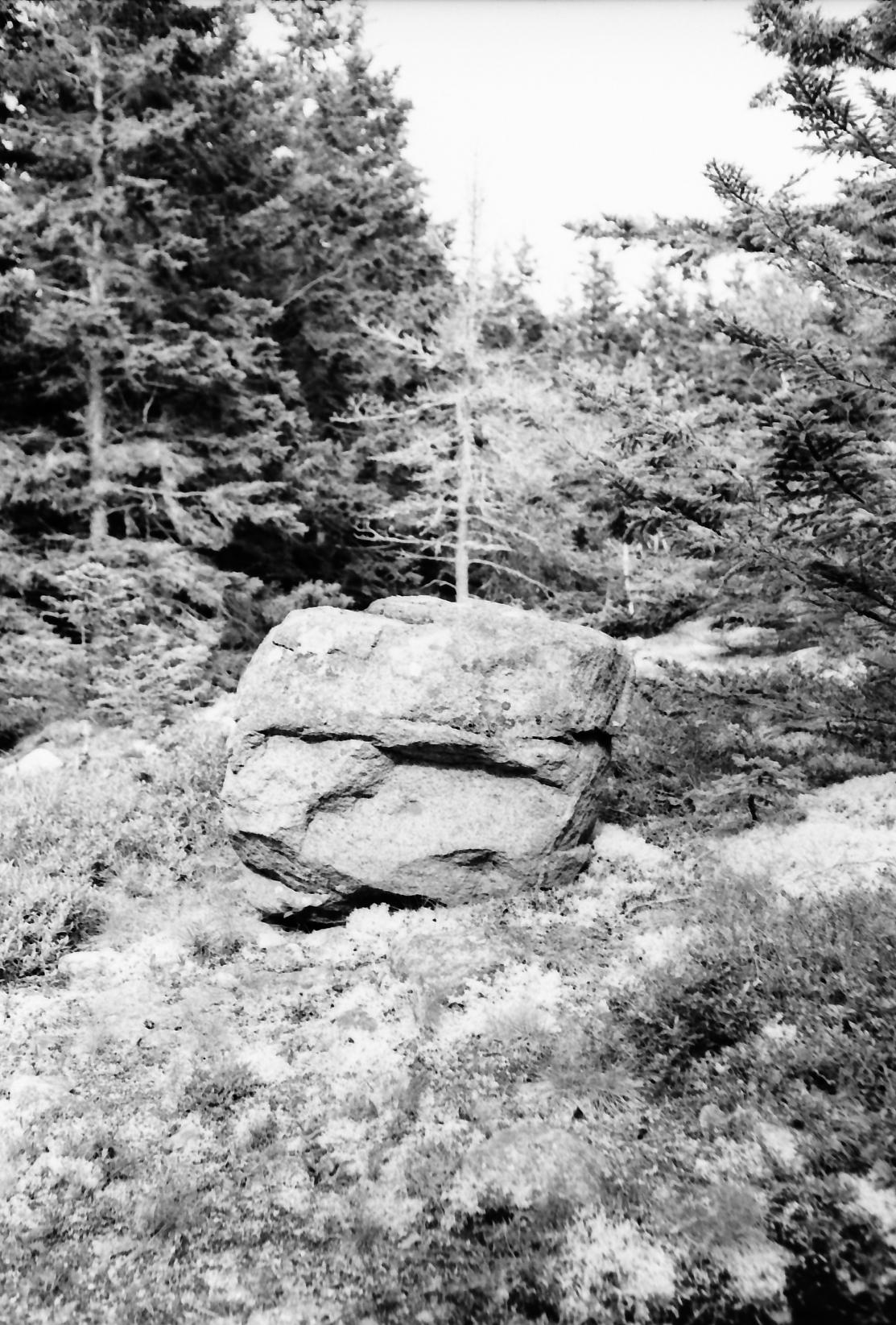 Acadia_Trip-55.jpg