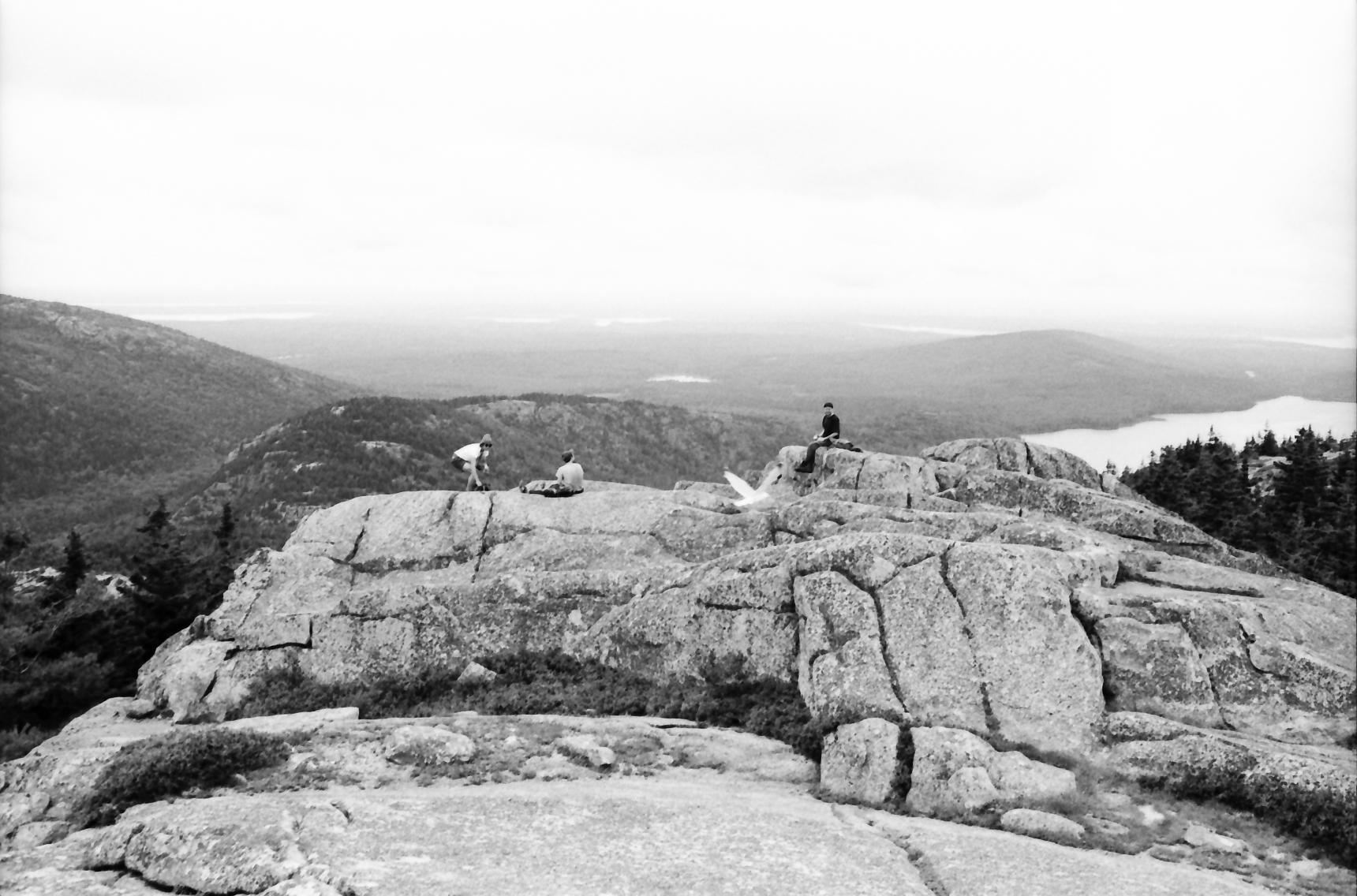 Acadia_Trip-57.jpg