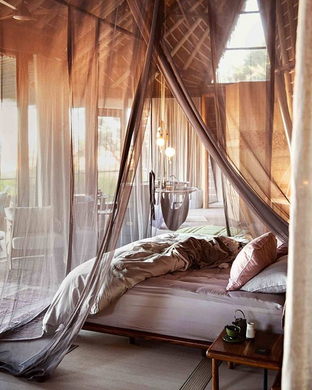 For the adventure traveler, Jao Camp is one of our go-to properties. With only five elegant and spacious suites, you get to experience one of the most exclusive spots in Botswana. Contact letsgo@azariatravel to book your South African adventure this fall. ⠀⠀⠀⠀⠀⠀⠀⠀⠀ ⠀⠀⠀⠀⠀⠀⠀⠀⠀ Photo: @crookesandjackson