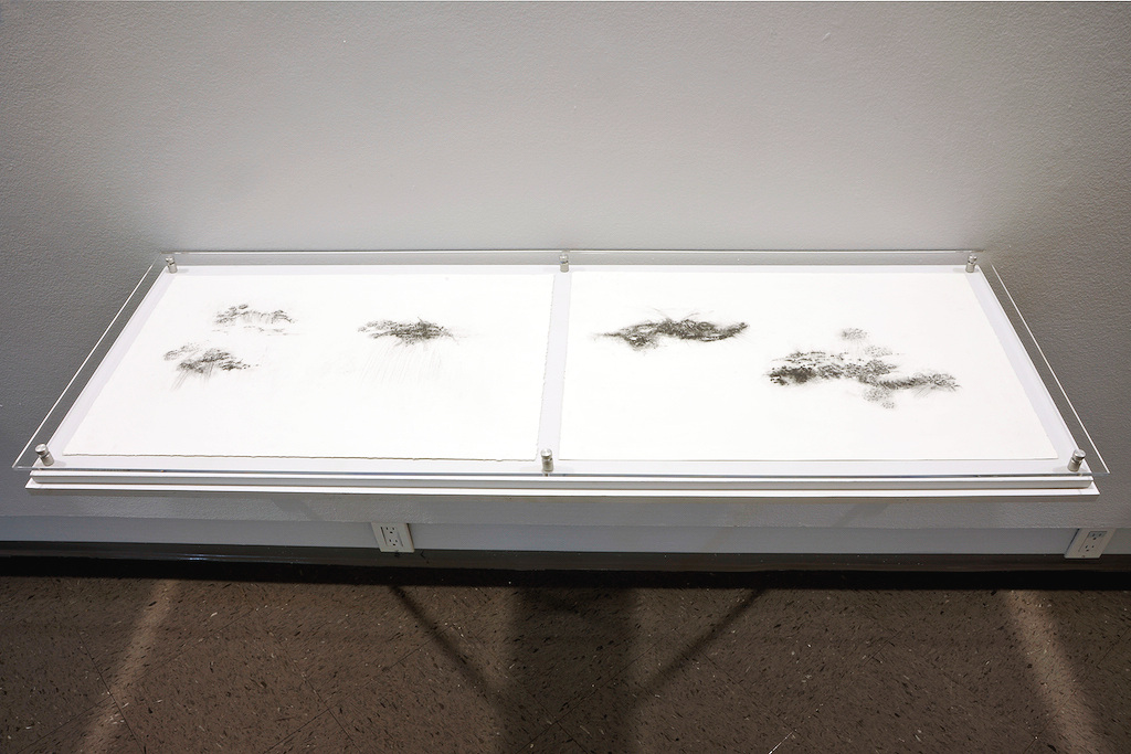exhibition installation with drawing displayed in vitrines, 2015
