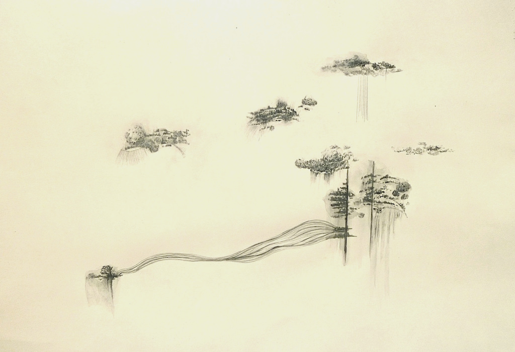 Floating  series, graphite on  colour paper, 22  x 30 inches