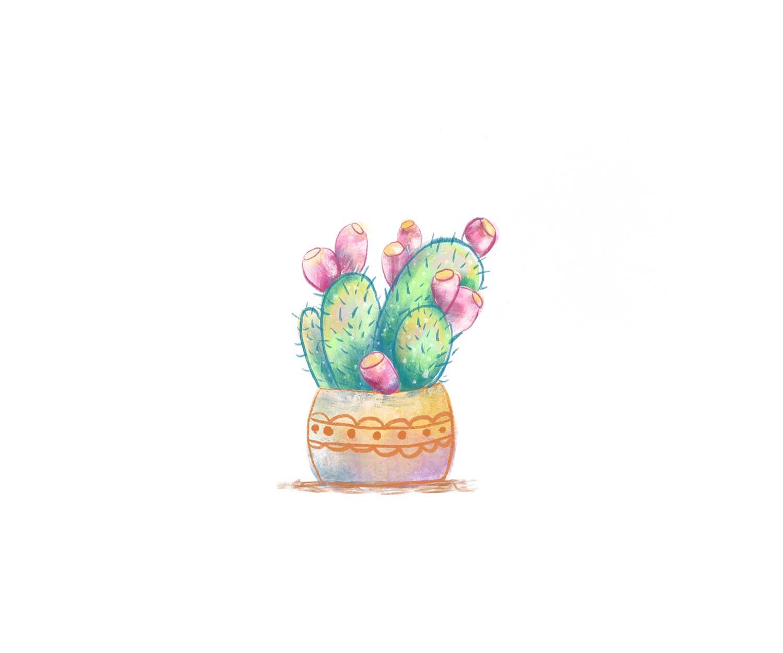 Cactus_Light.jpg