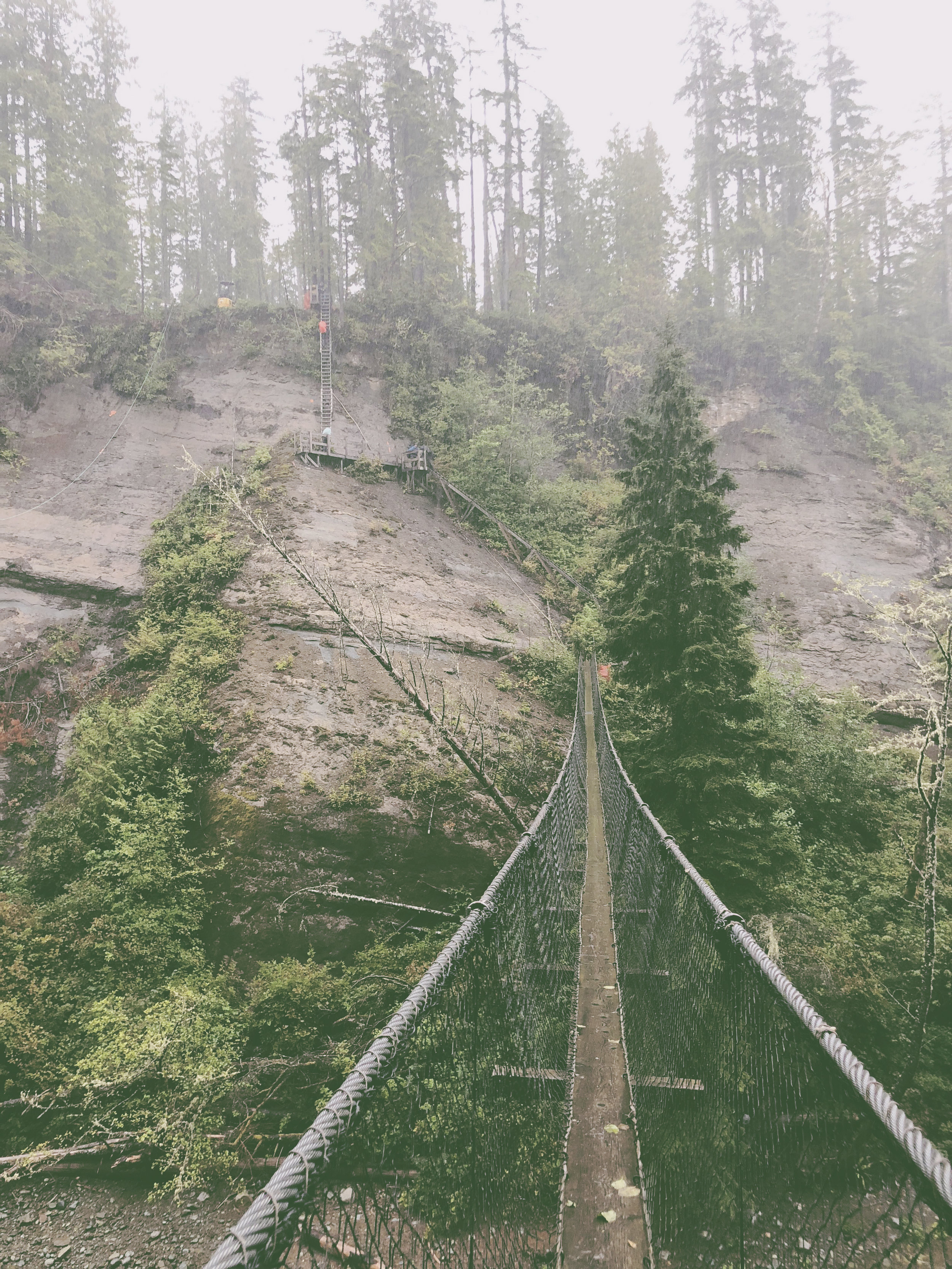 WestCoastTrail_Bridge