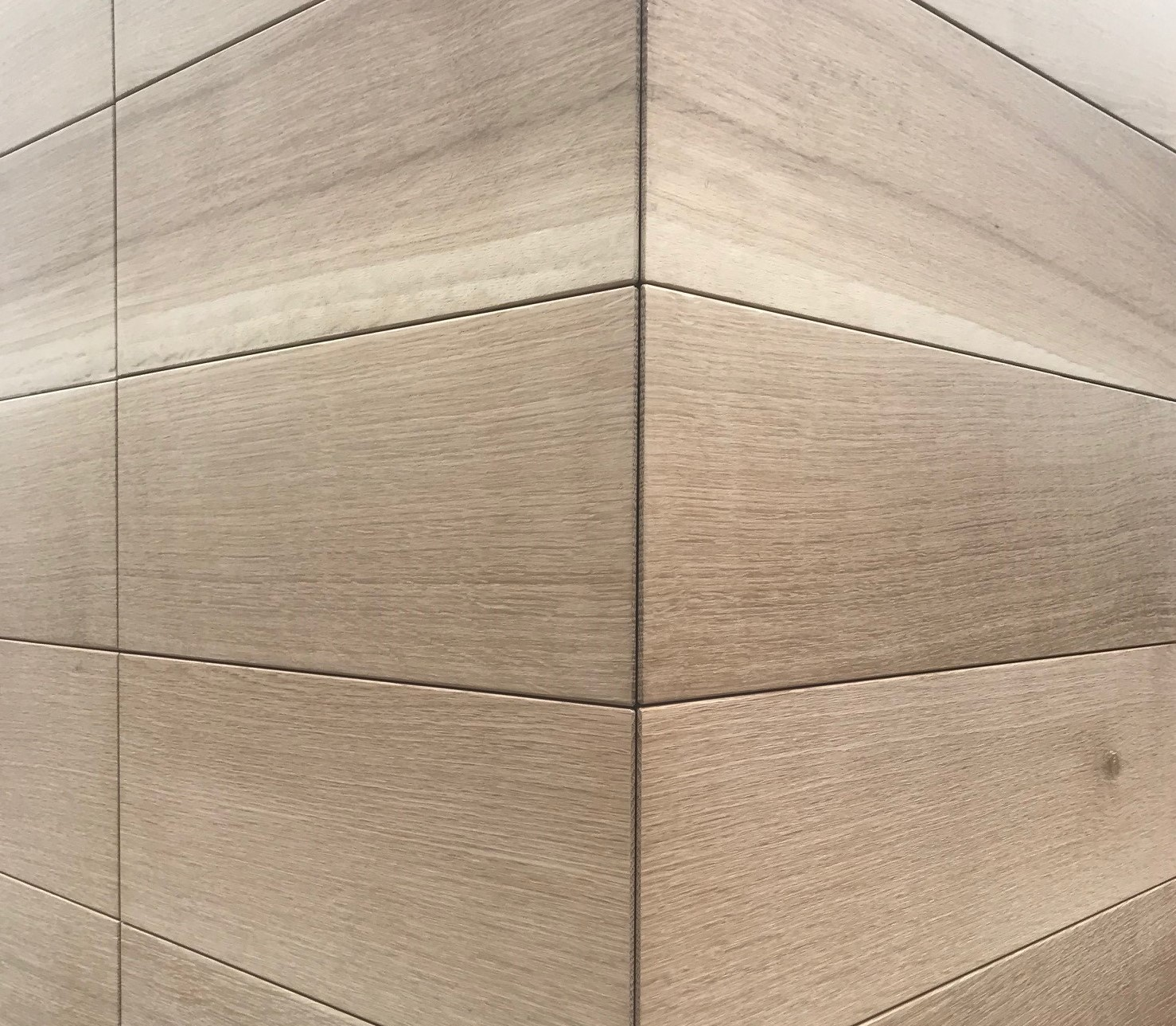 Oak 02.jpg