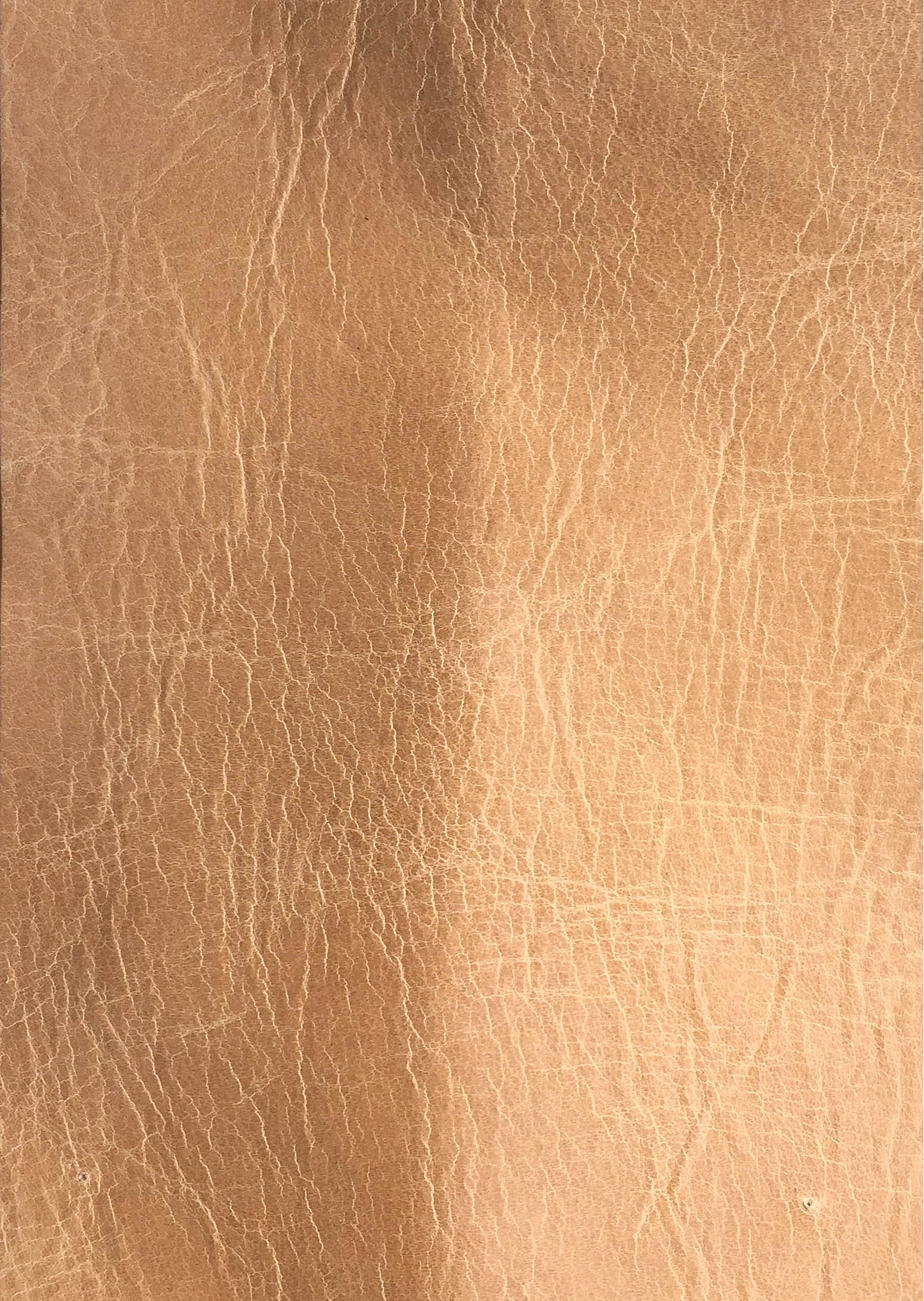Leather+01.jpg