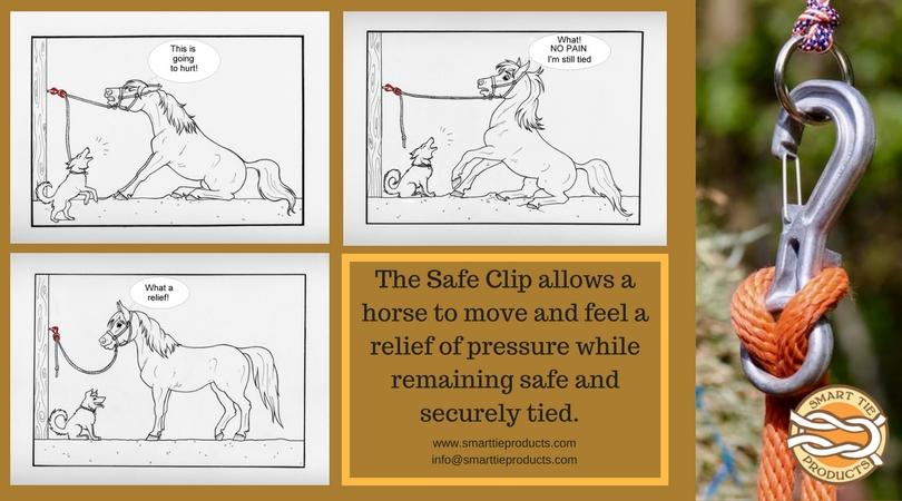 The Safe Clip.jpg