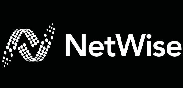 Netwise_B%3AW.jpg
