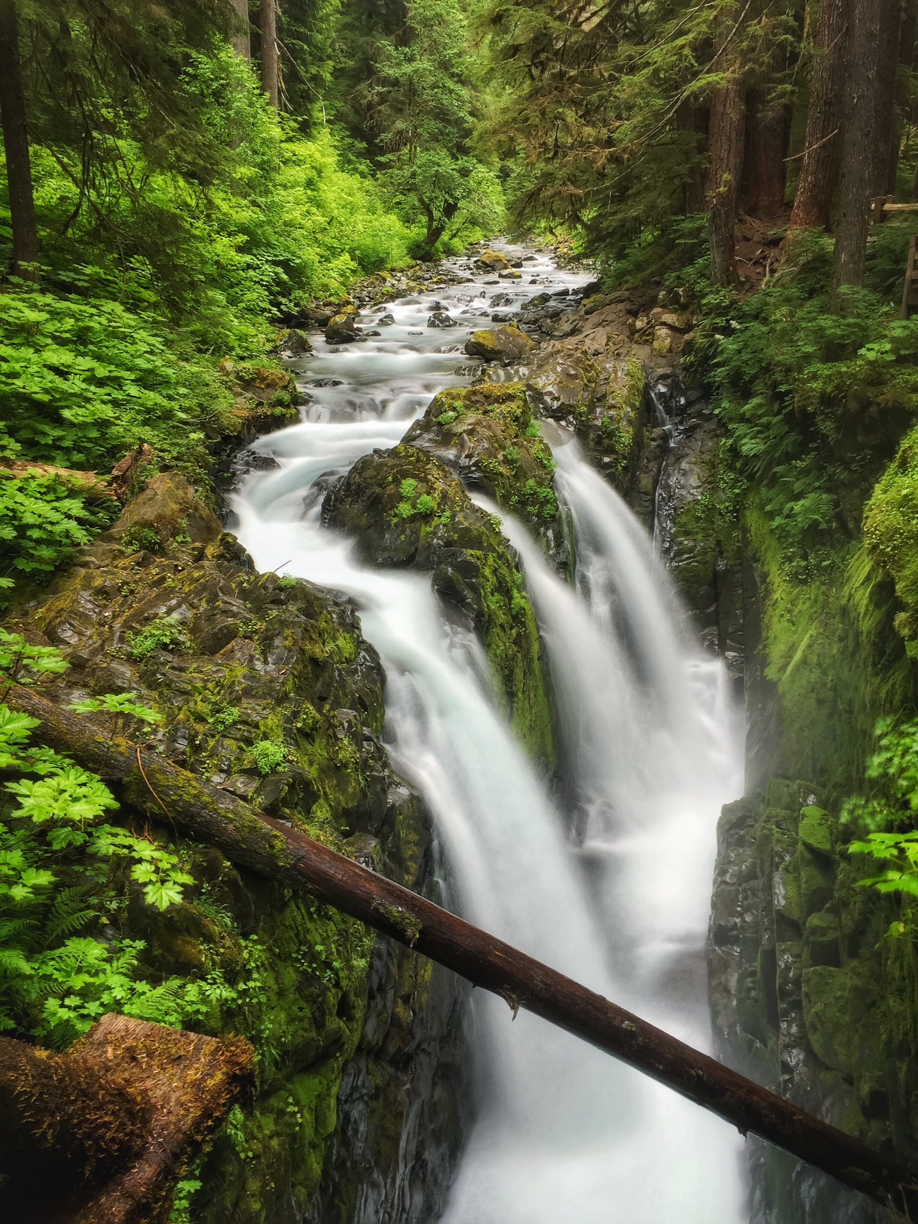 sul Doc Falls @ Olympic national park