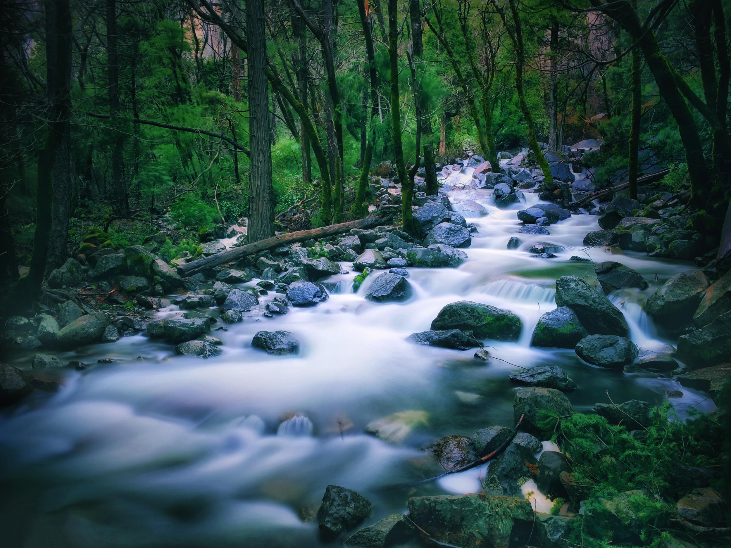 Bridalveil creek @ Yosemite national park