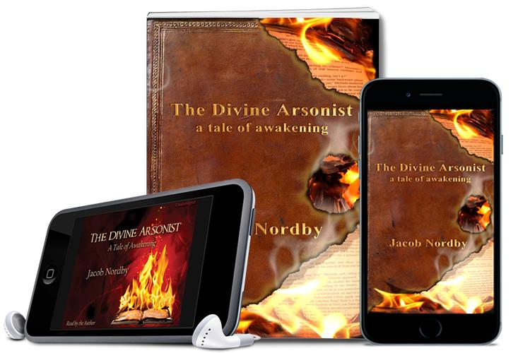 books-divine-arsonist.jpg