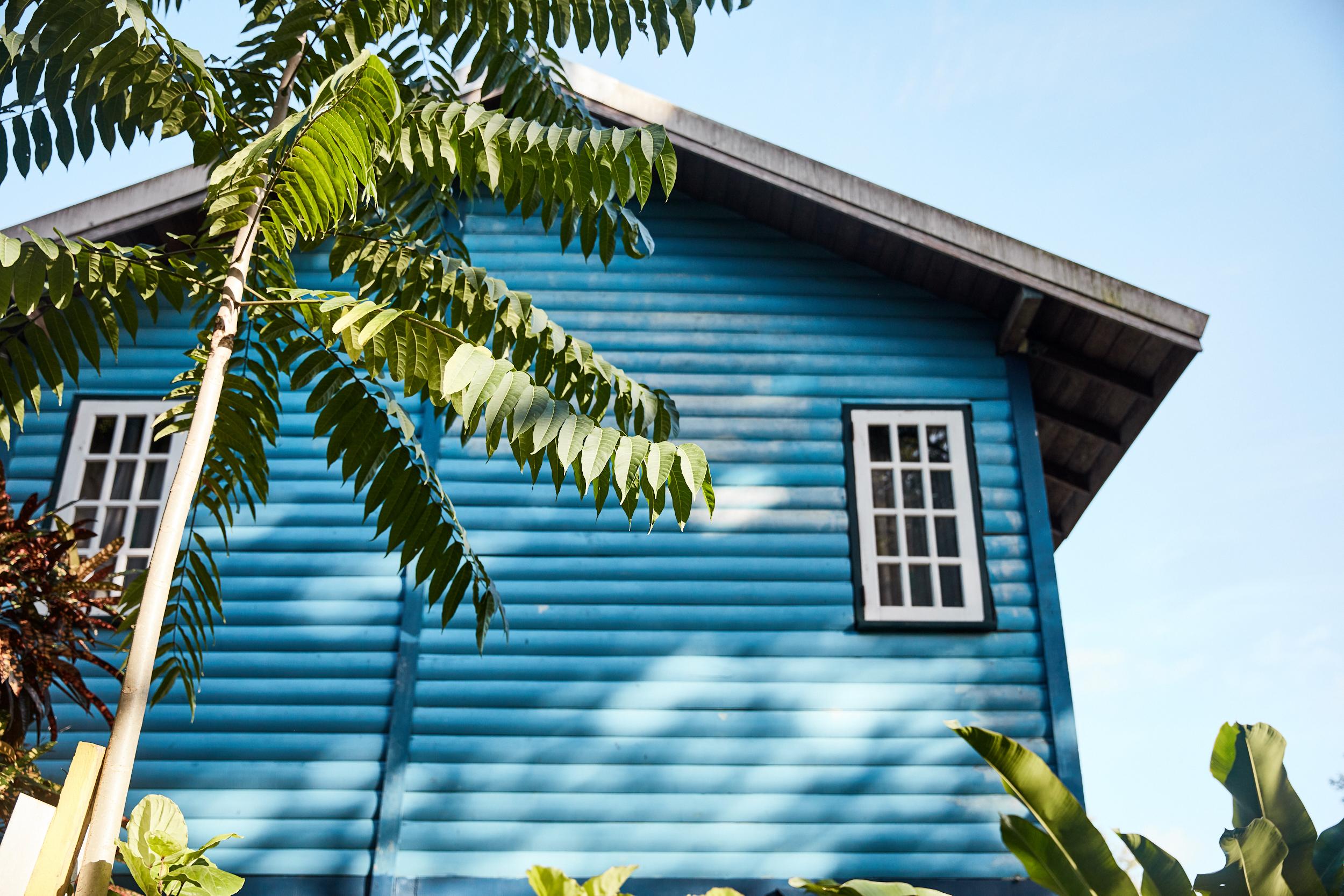 JLP_caribbean_0009.jpg
