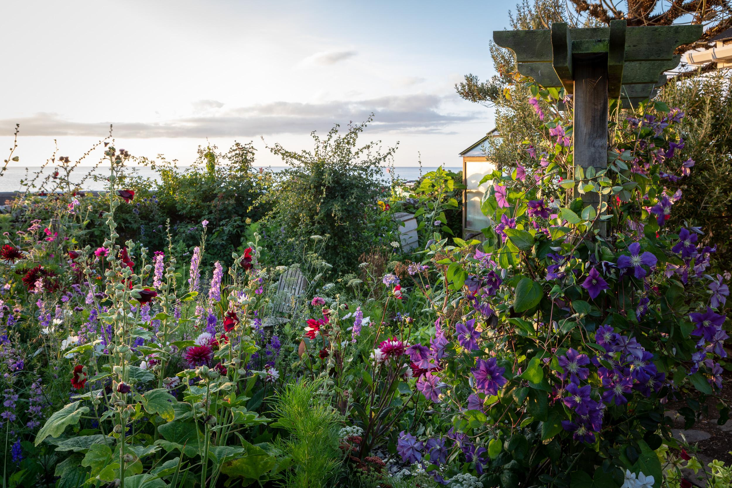 Garden at Beesands in Devon, for Country Living Magazine.