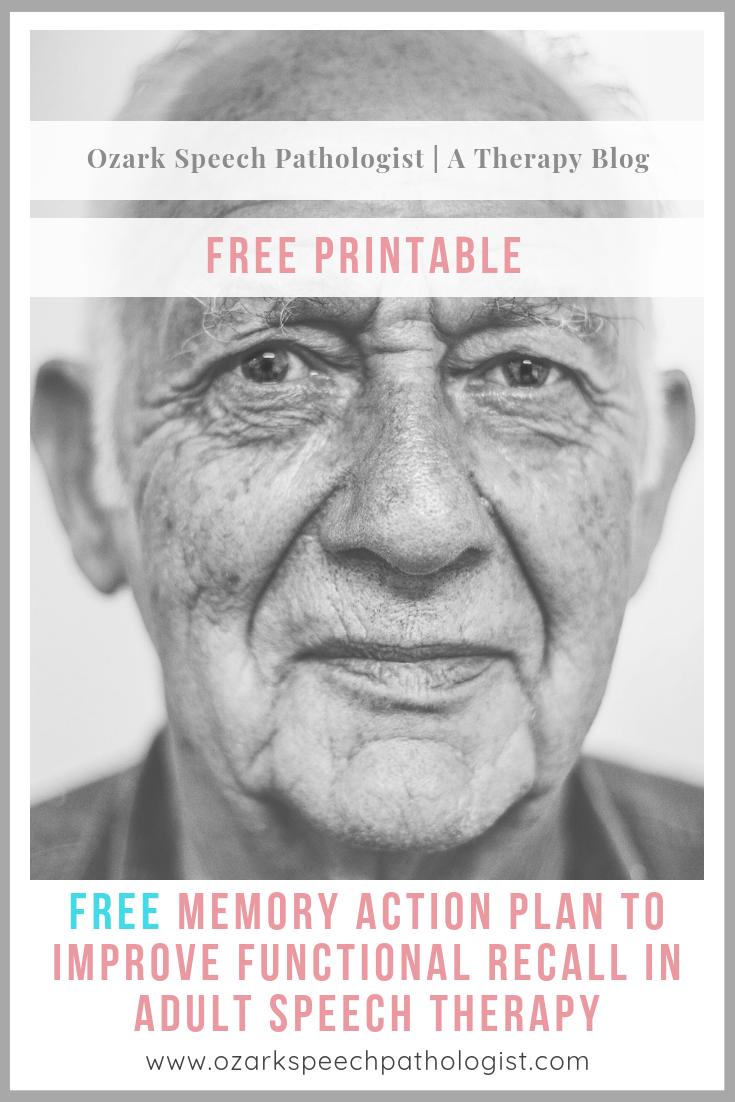 pinterestmemoryactionplan.png