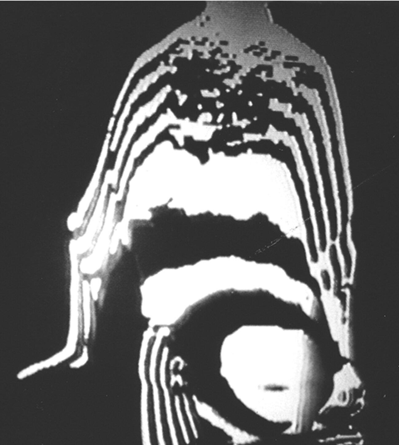 body-image-01.jpg