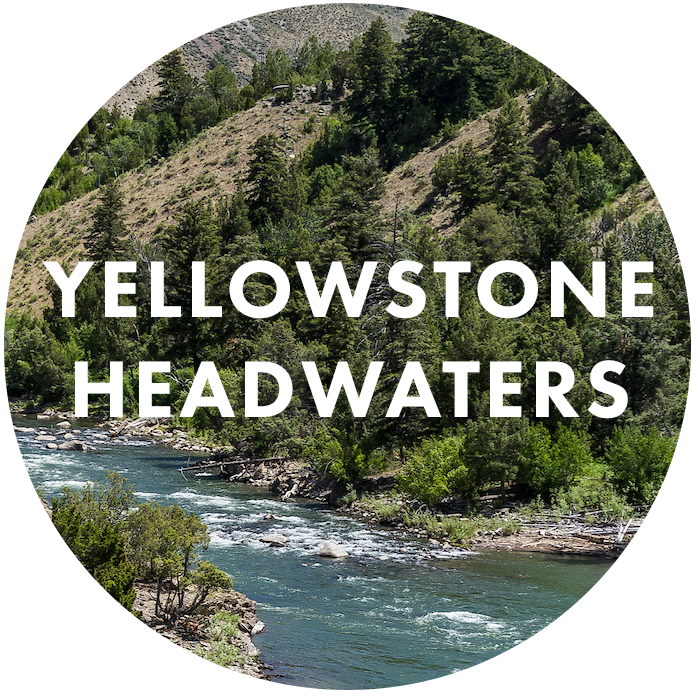 Yellowstone Headwaters
