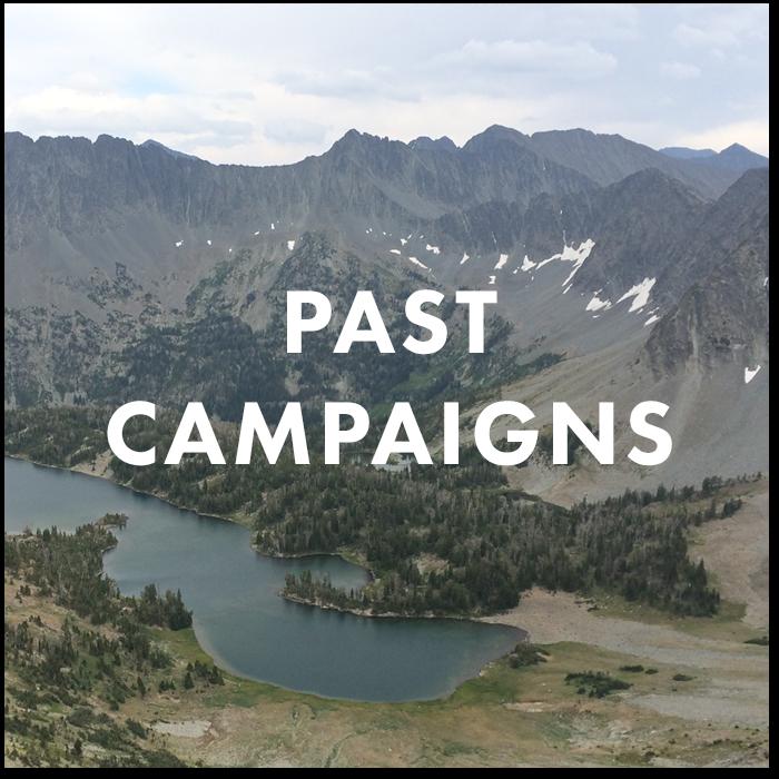 Past Campaigns